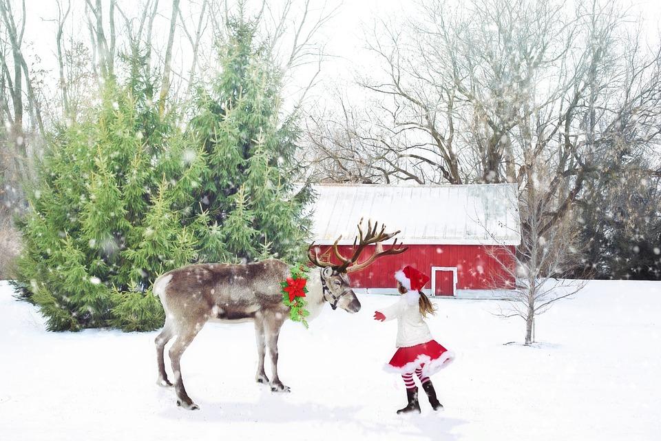 christmas-scene-1846486_960_720.jpg