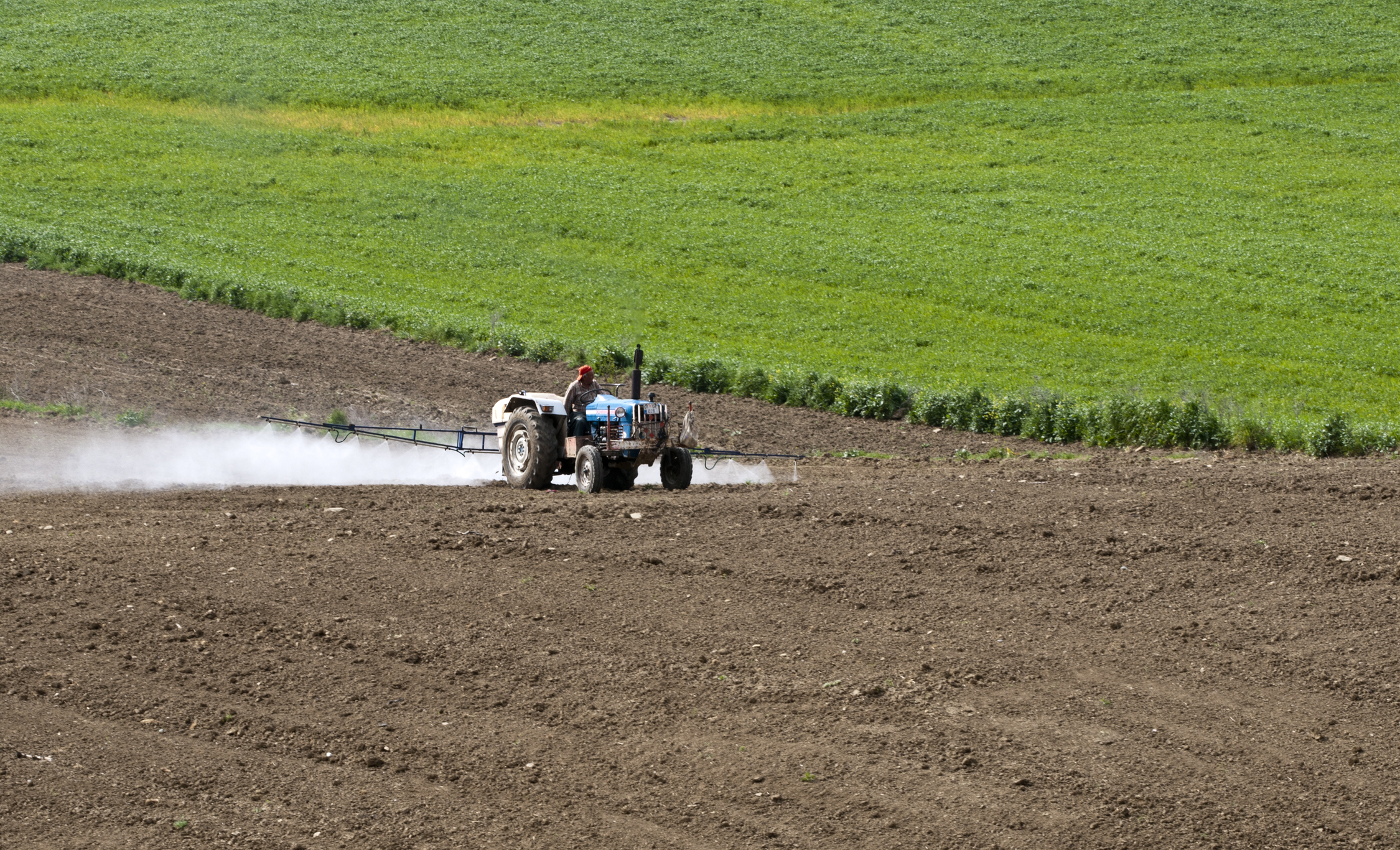 Insects Pesticides_application_02.jpg
