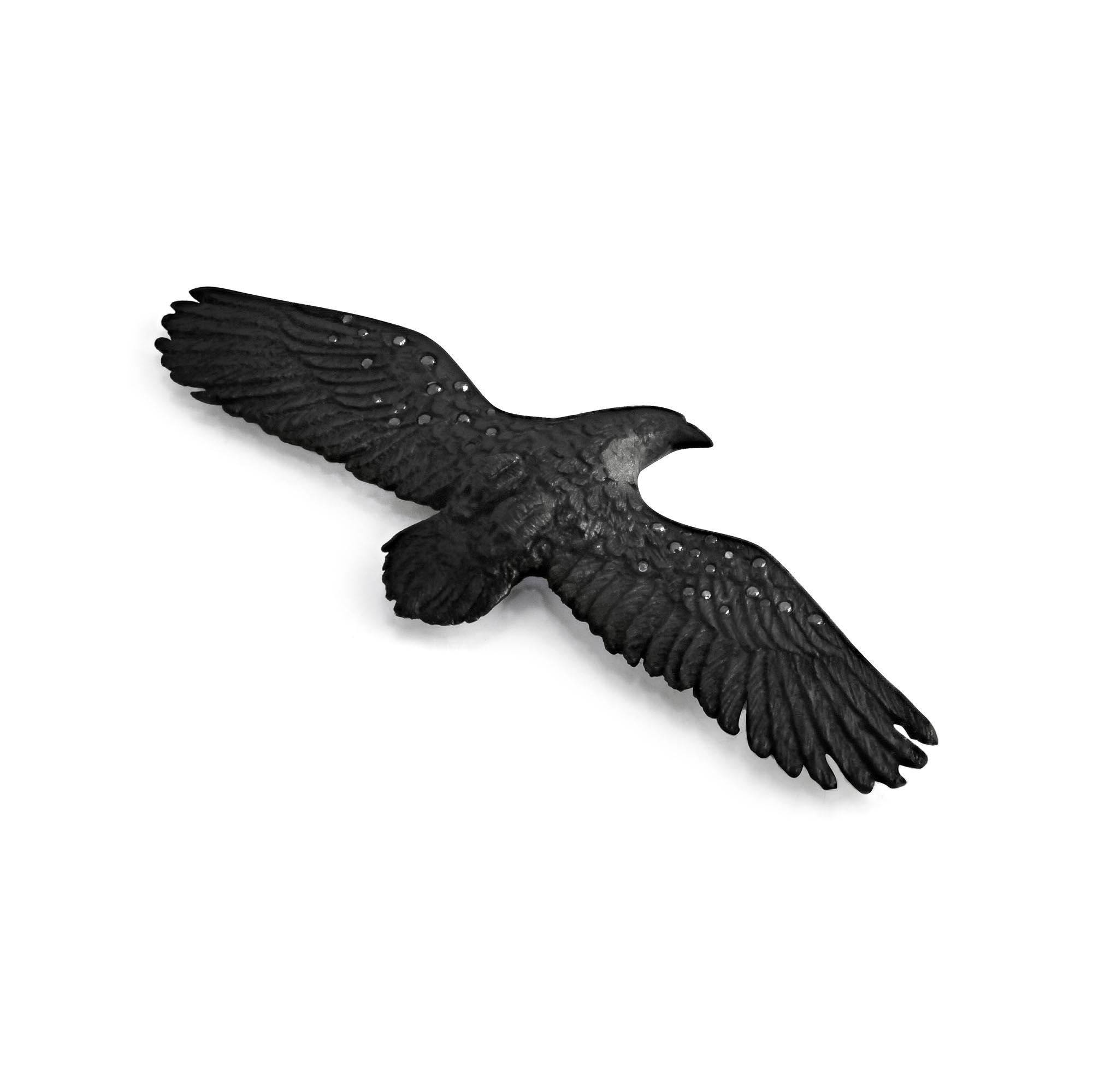cad-man-raven.jpg