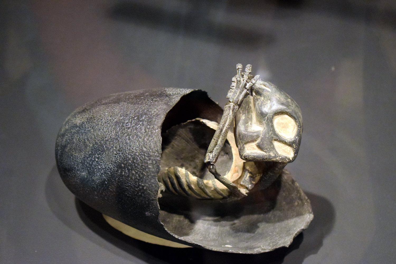 dinosaur egg.JPG