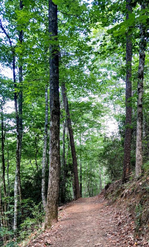 Lakeshore Trail beyond Road to Nowhere.jpg