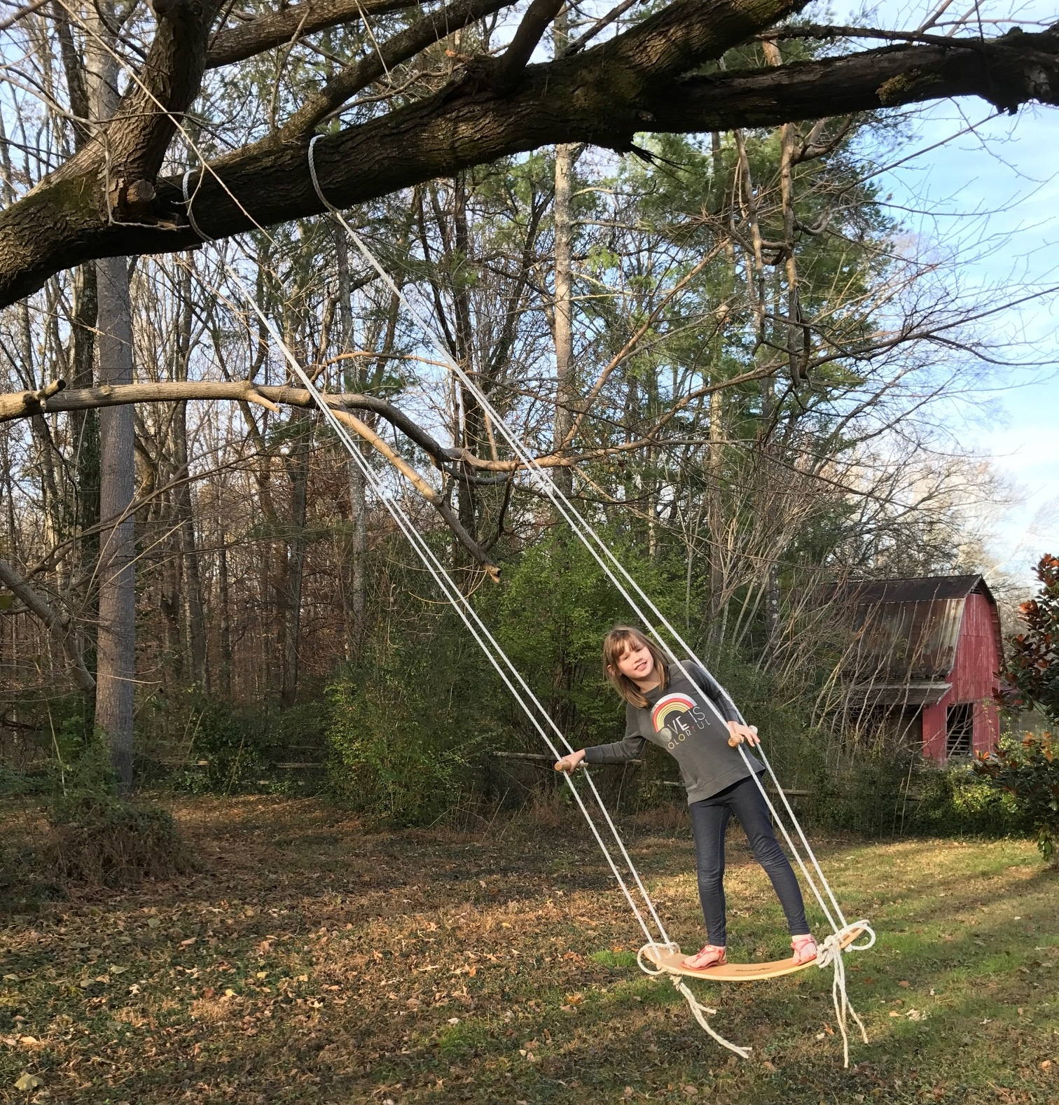 It may look like just a swing but it is so much more fun.