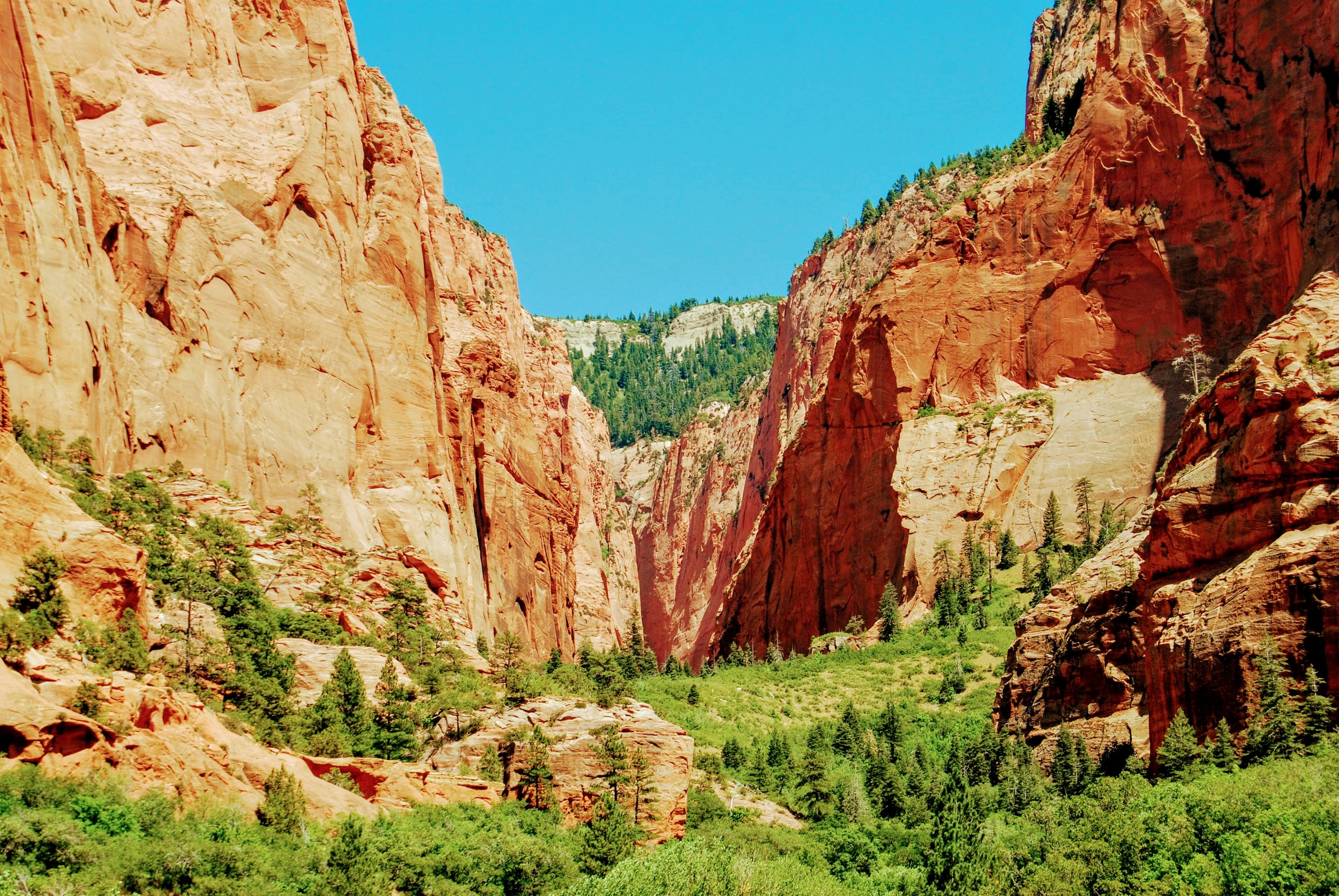 View from Kolob Canyons Road