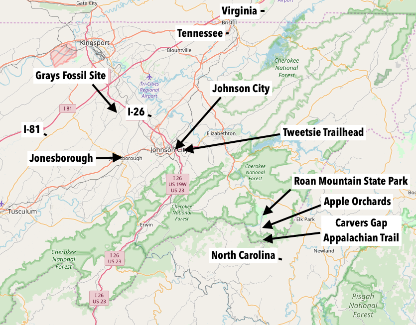 Johnson city map overview.png