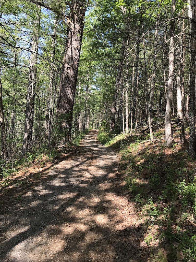 Lake Loop Trail