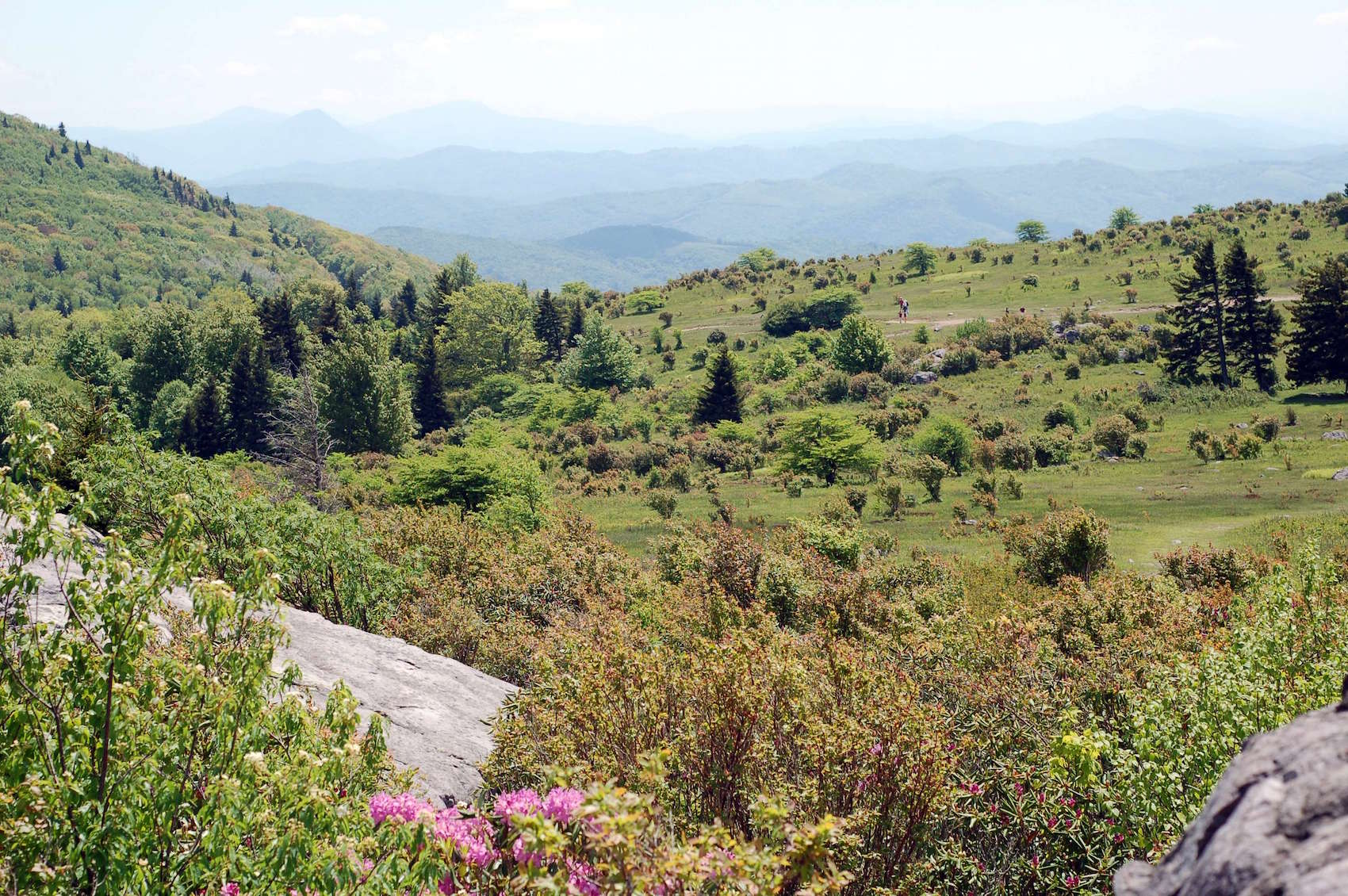 View from Wilburn Ridge at Grayson Highlands State Park