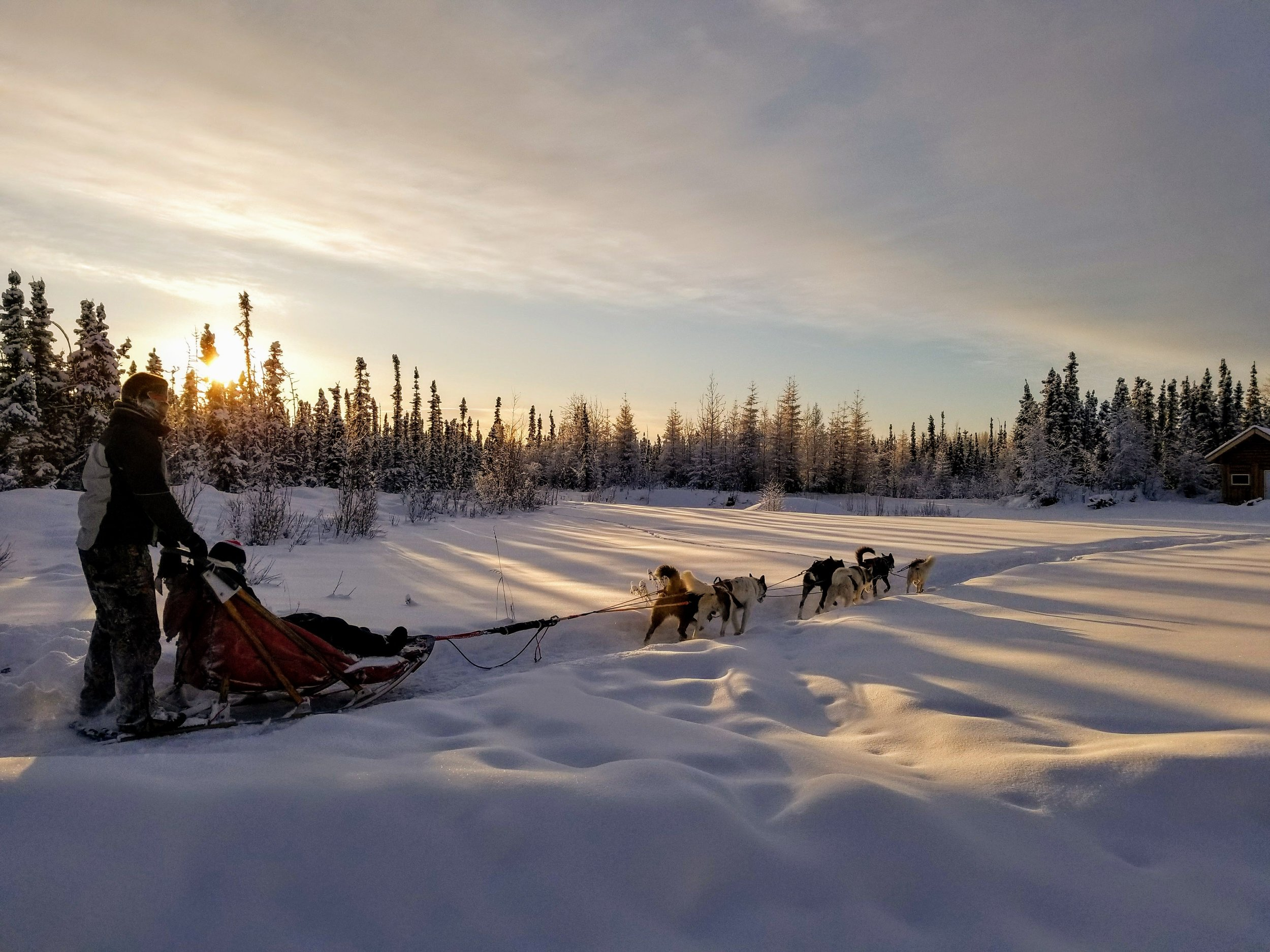 The worst part about driving the sled is that you can't take your hands off to take pictures. Luckily the bucket person can snap away.
