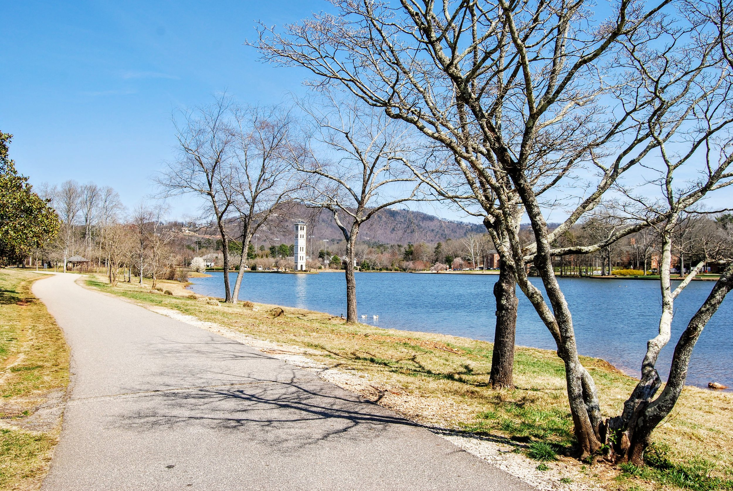 Furman's gorgeous campus. You can bike down the lakeside path a ways and then cut across (and up) a grassy bit to your left to get back to the Swamp Rabbit Trail.