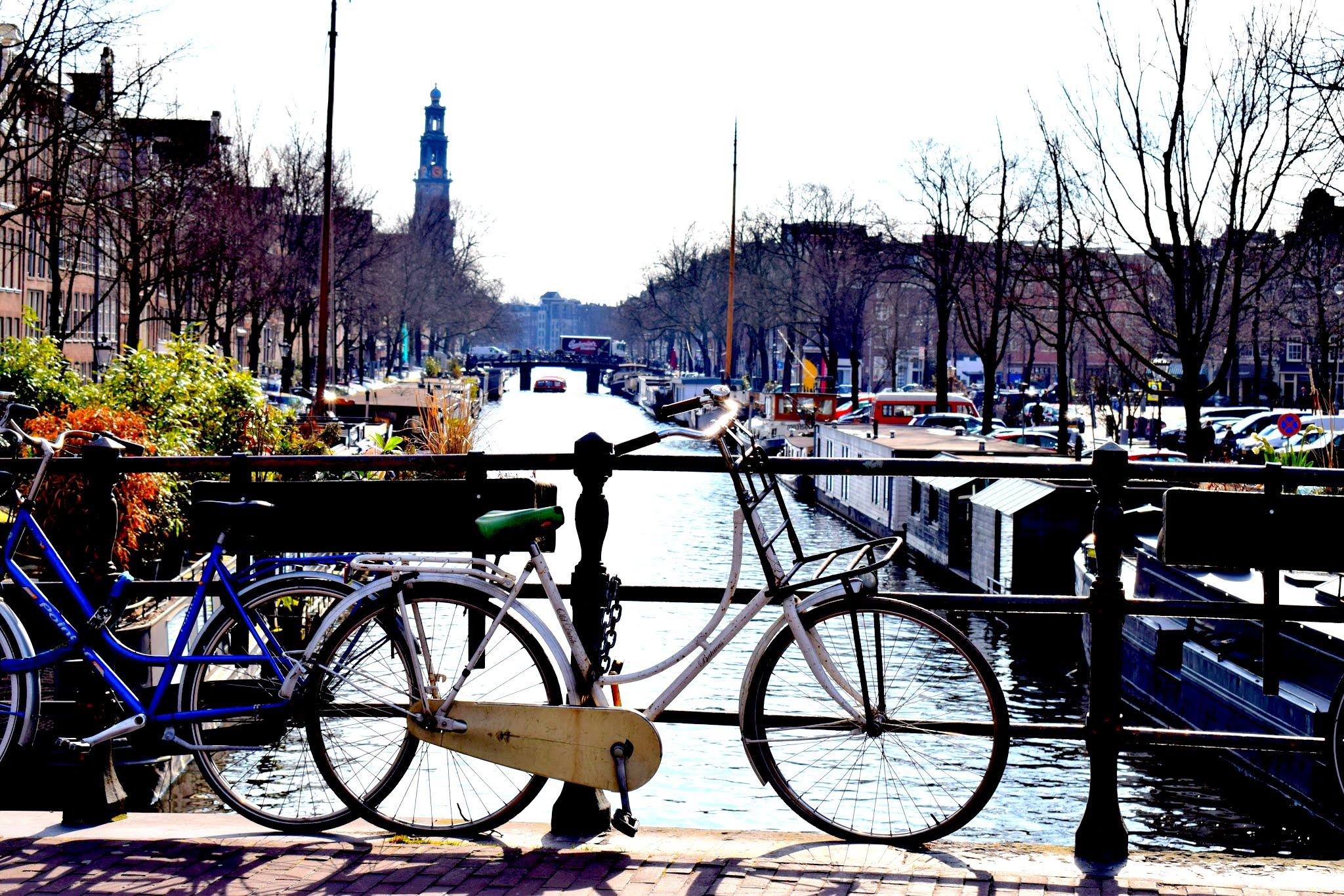 favorite-bike-photo.jpg