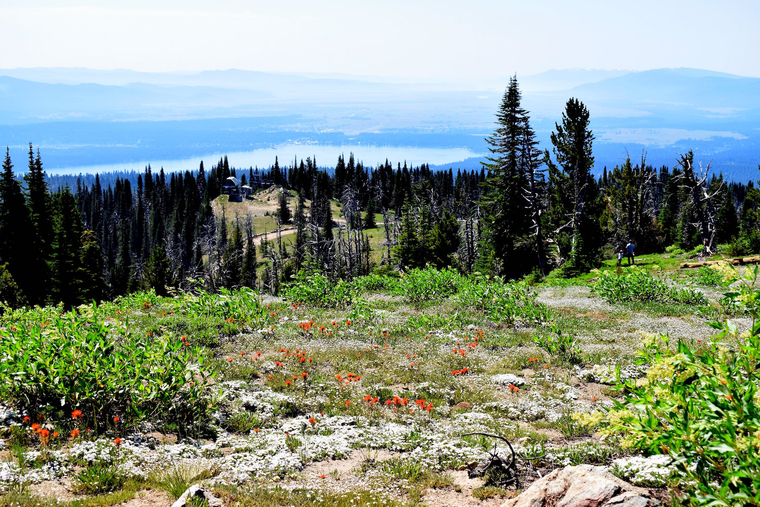 View from the top of Brundage