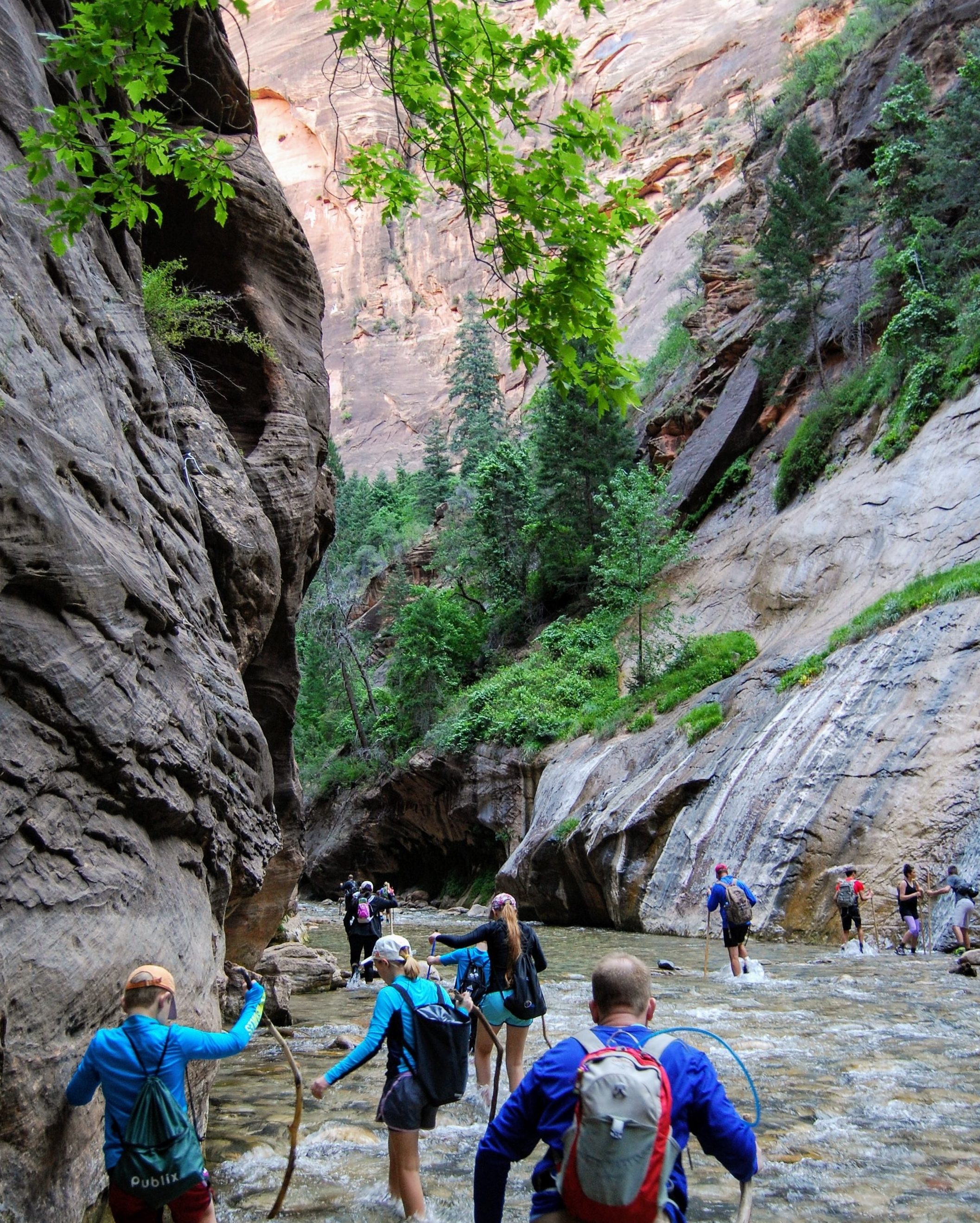 Conquering The Narrows in Zion National Park. The Osprey held the important stuff (like food) which is why an adult carried it.