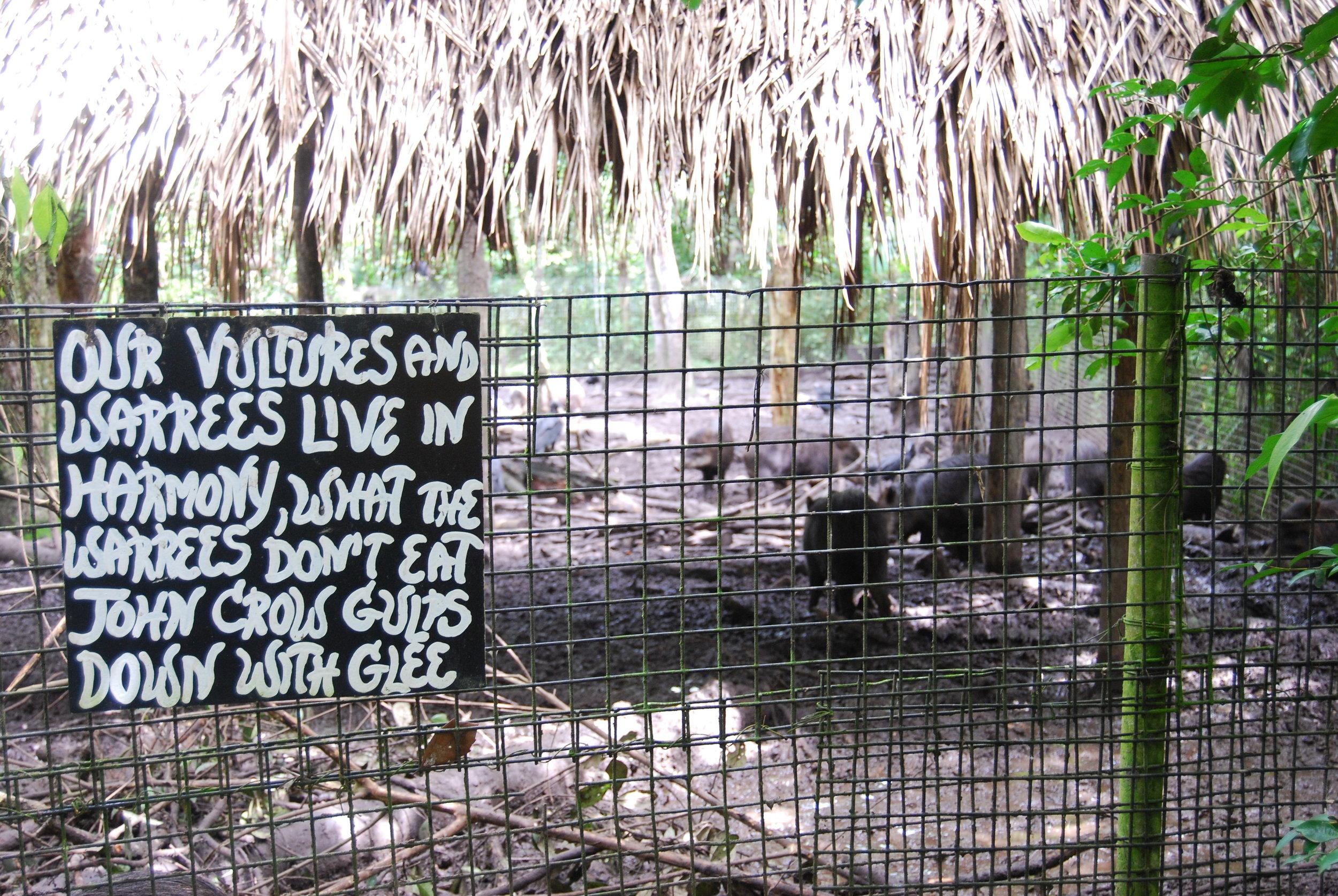 Vulture-Sign-Belize-Zoo.JPG