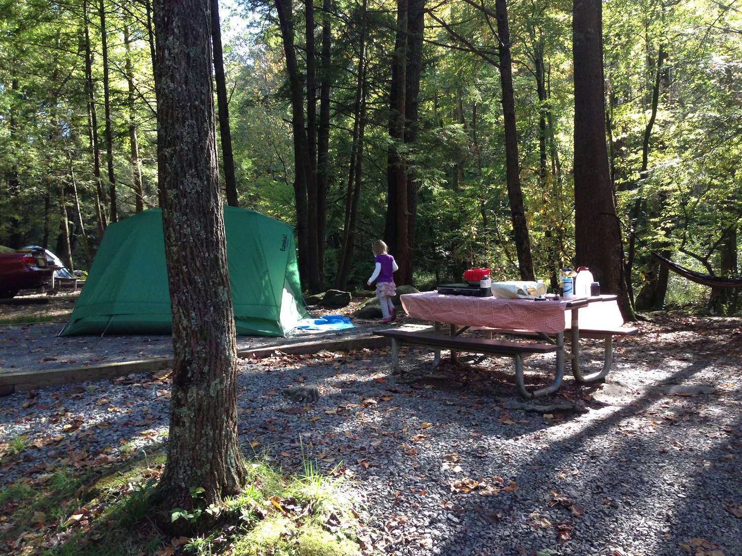 5 Great Campgrounds Within 2 hours of Knoxville, Tennessee
