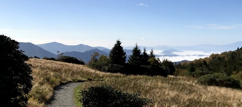 Appalachian Trail at Carver's Gap Near Roan Mountain State Park Campground