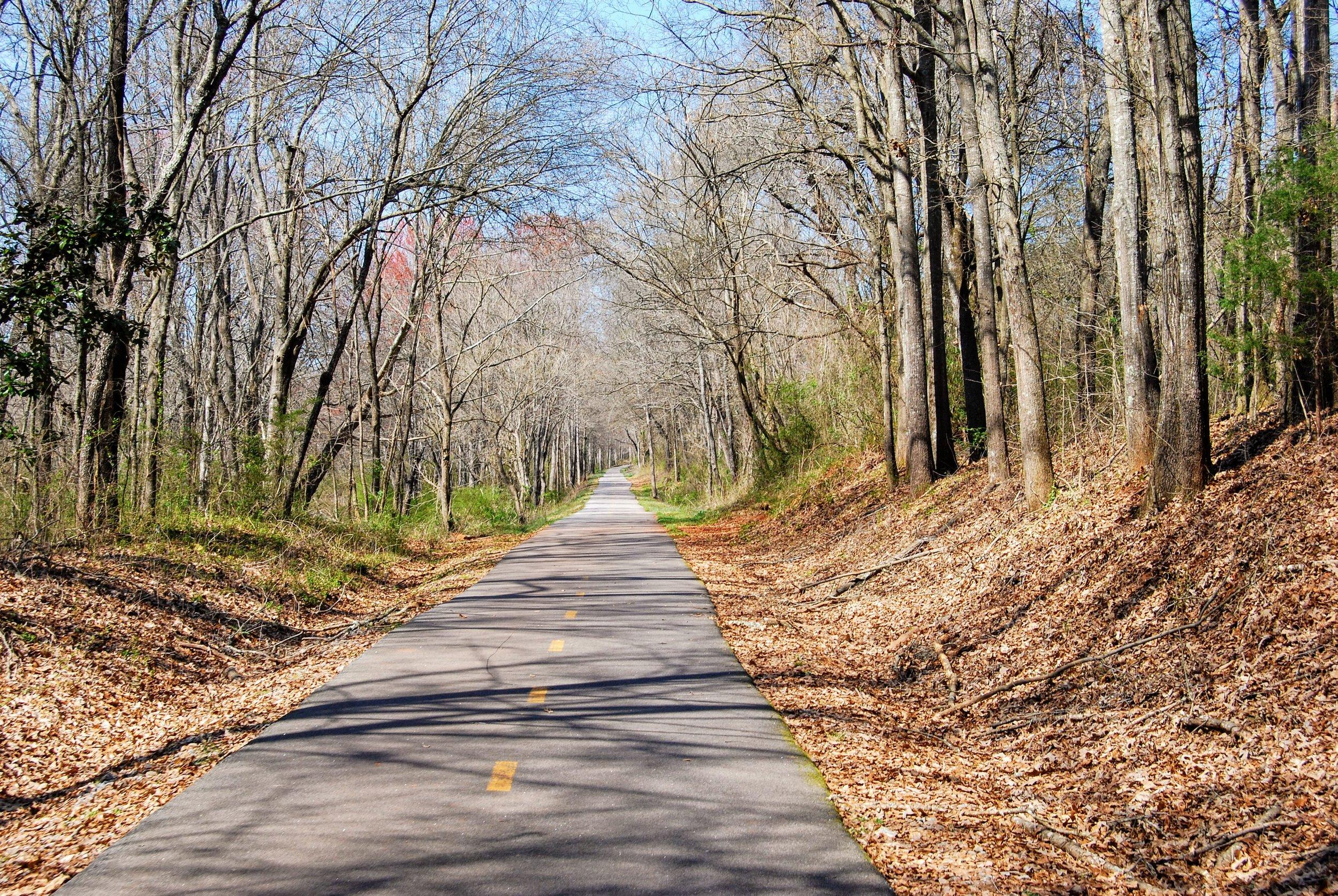 The lovely Swamp Rabbit Trail