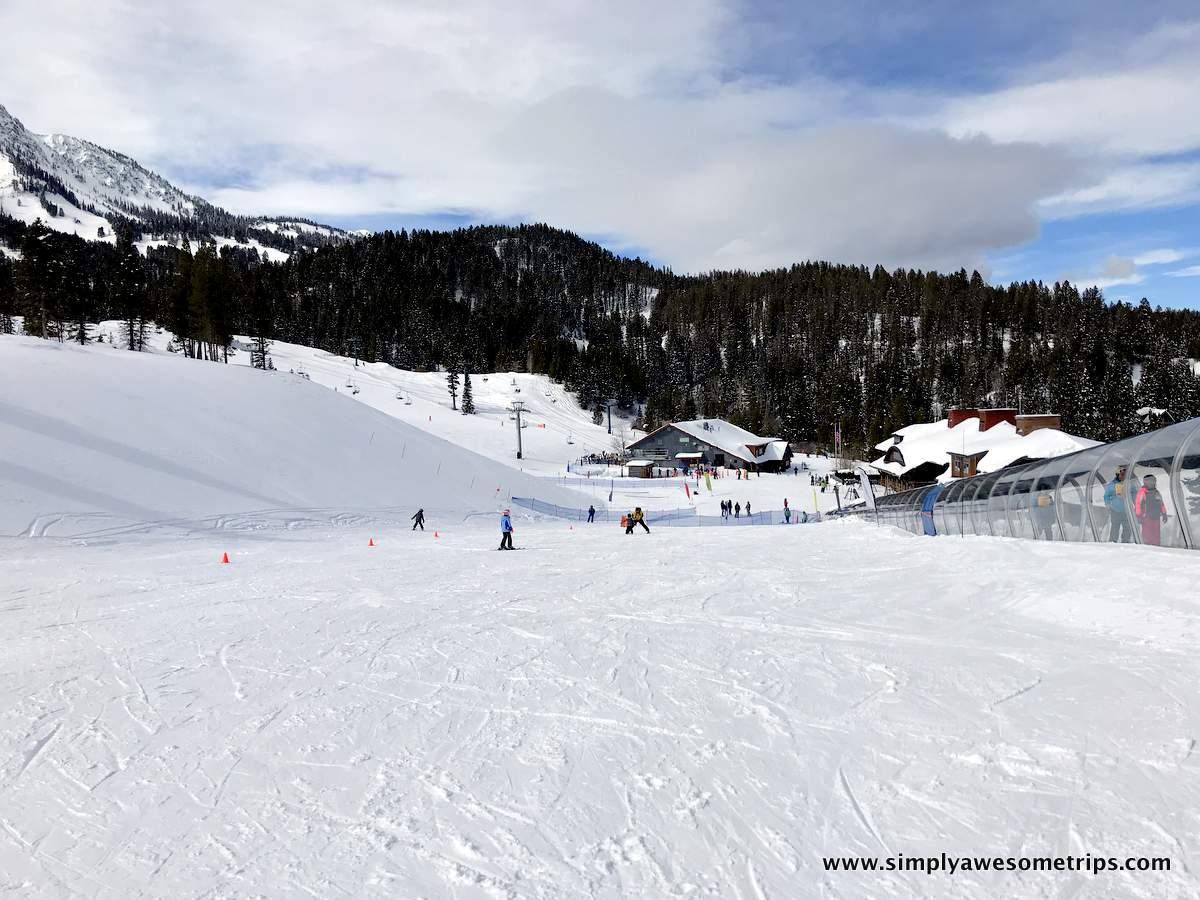 """Beginner ski hill next to Sundog """"Magic Carpet"""""""