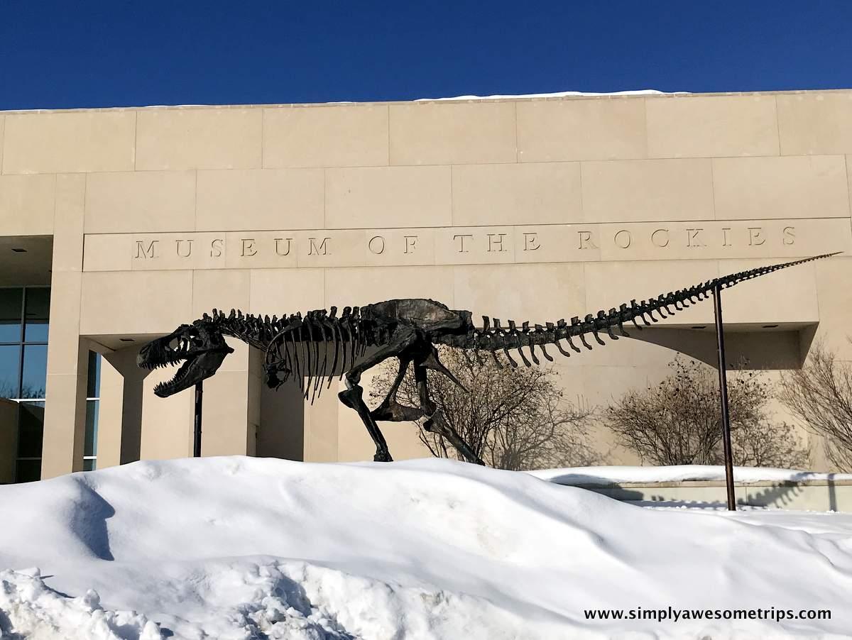 museum-of-the-rockies.JPG