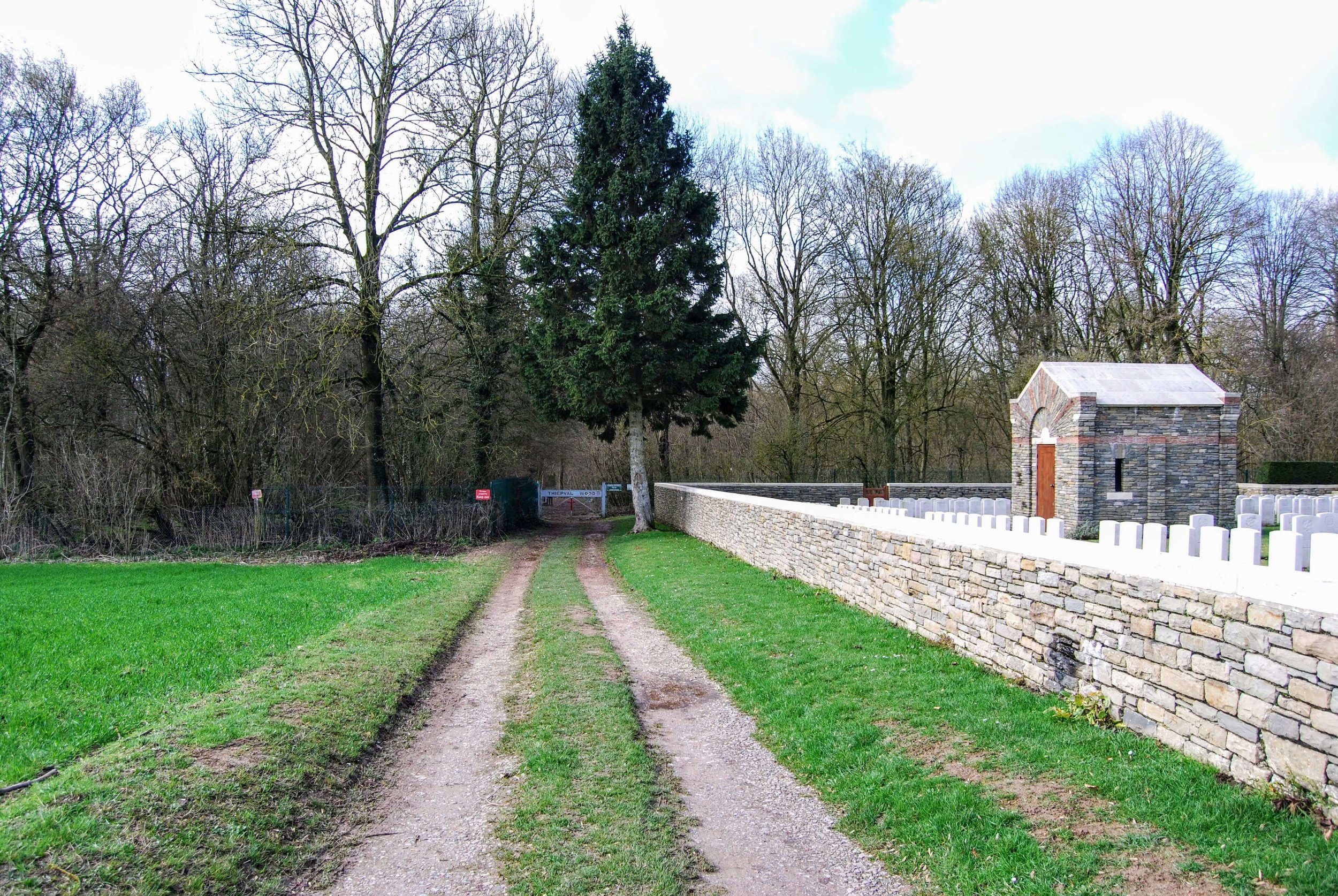 Thiepval Wood behind Connaught Cemetery
