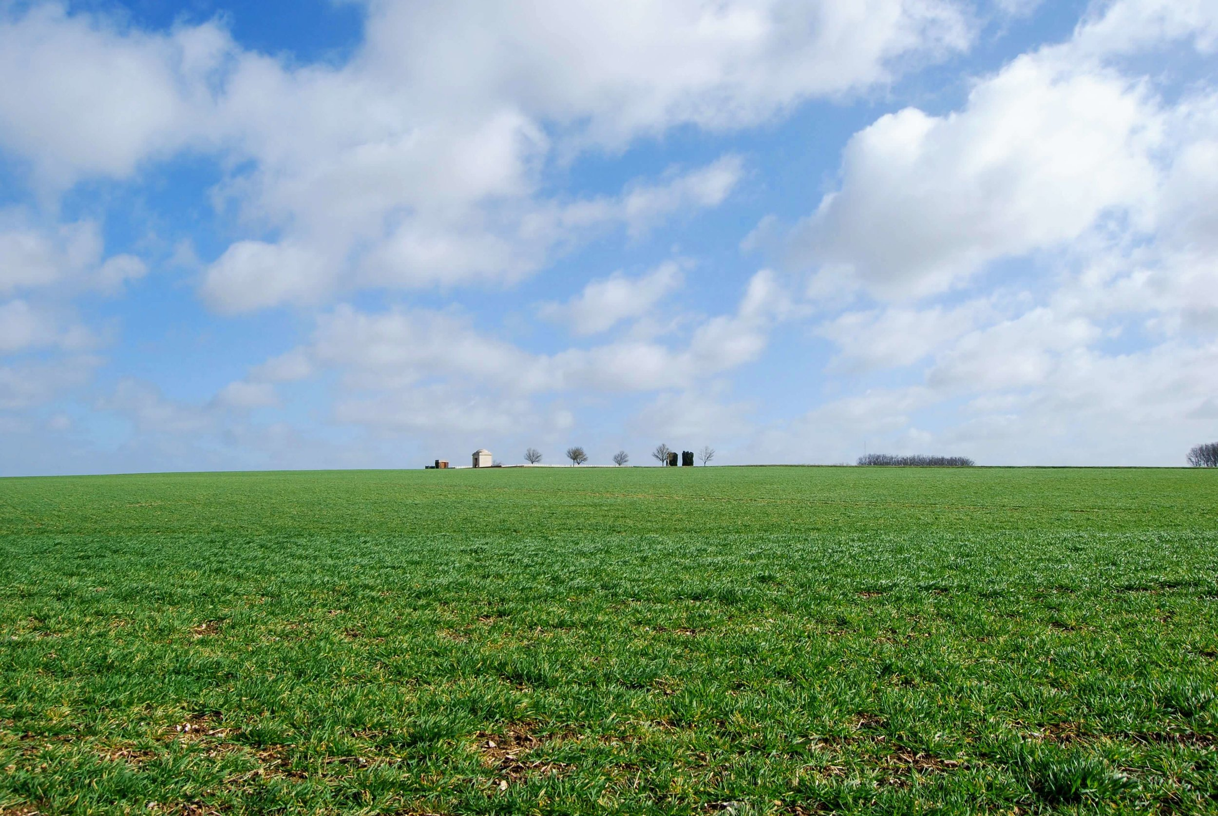 Looking across No Man's Land to the German lines in Thiepval