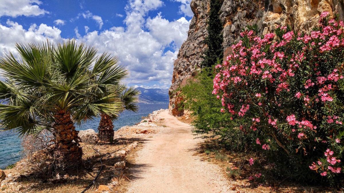 Greece-path.jpg