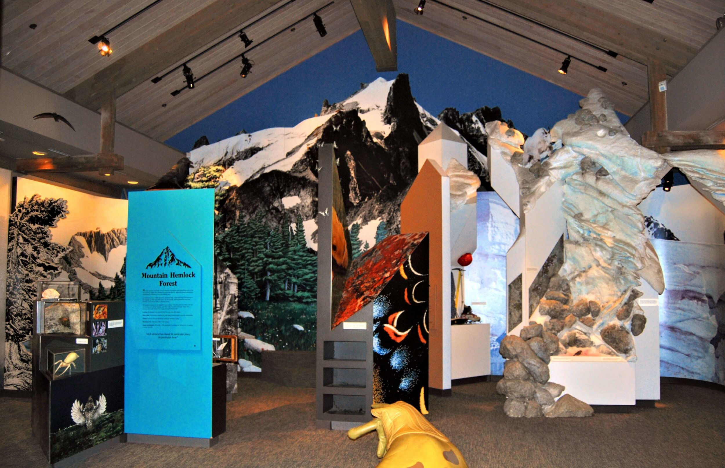 Exhibits on the different habitats found in North Cascades National Park