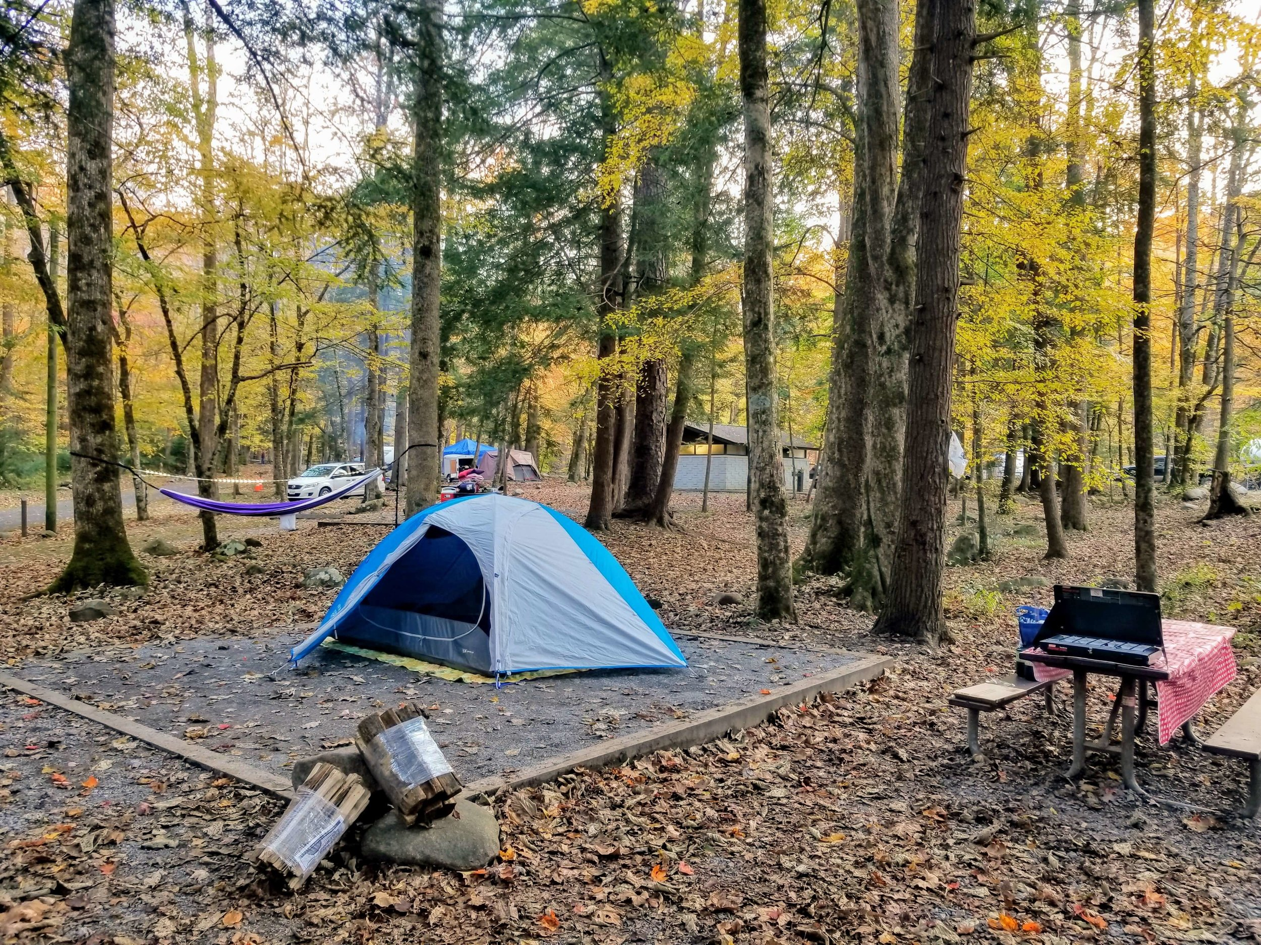 A spur of the moment trip to the Great Smoky Mountains. It was the last warm weekend in the fall so we decided to leave Saturday afternoon and were set up by Saturday evening. We may have forgotten some things (camp chairs, firestarter logs) but we had a fantastic time anyway.