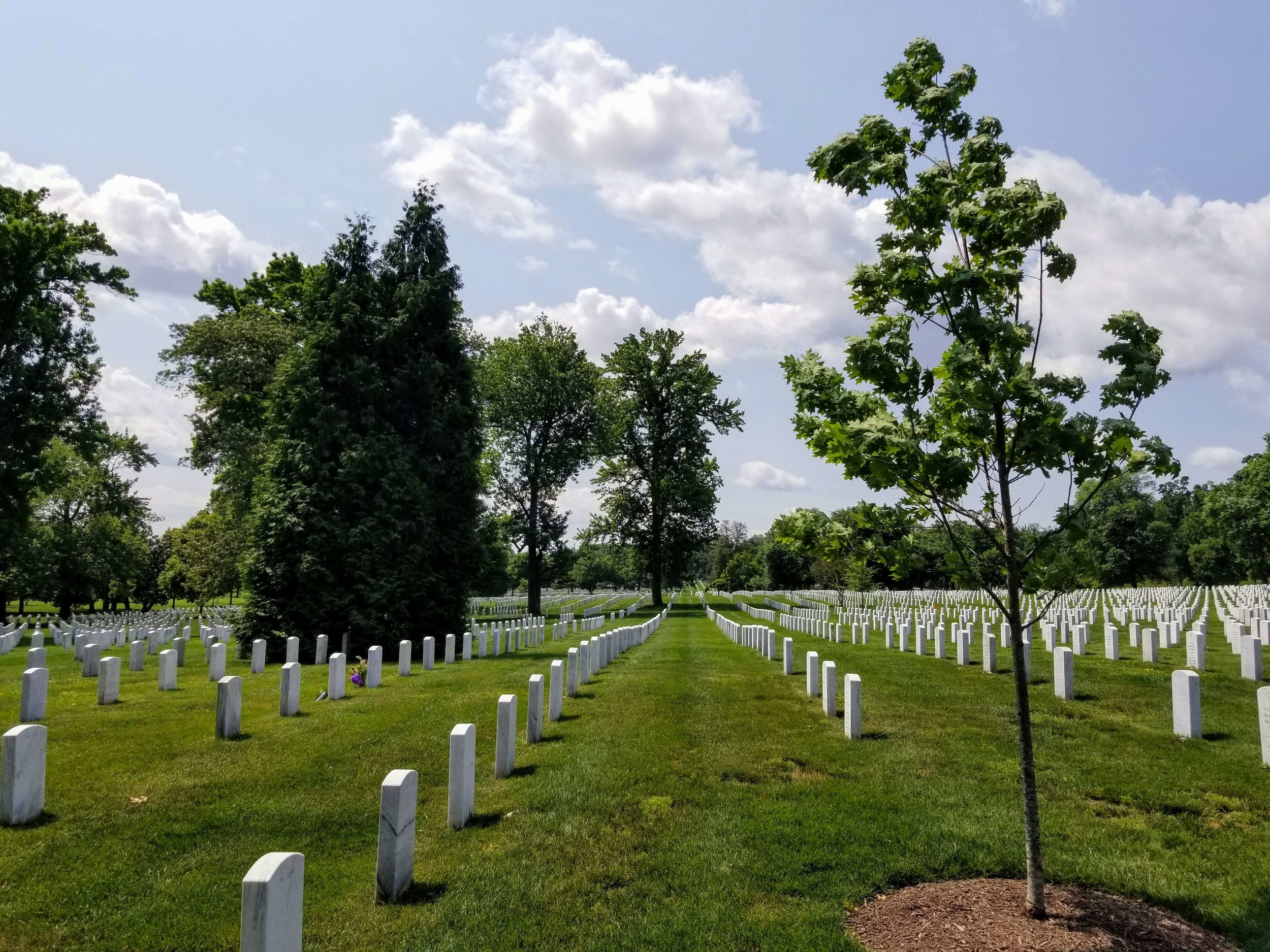 One of the many different sections of graves found in Arlington National Cemetery