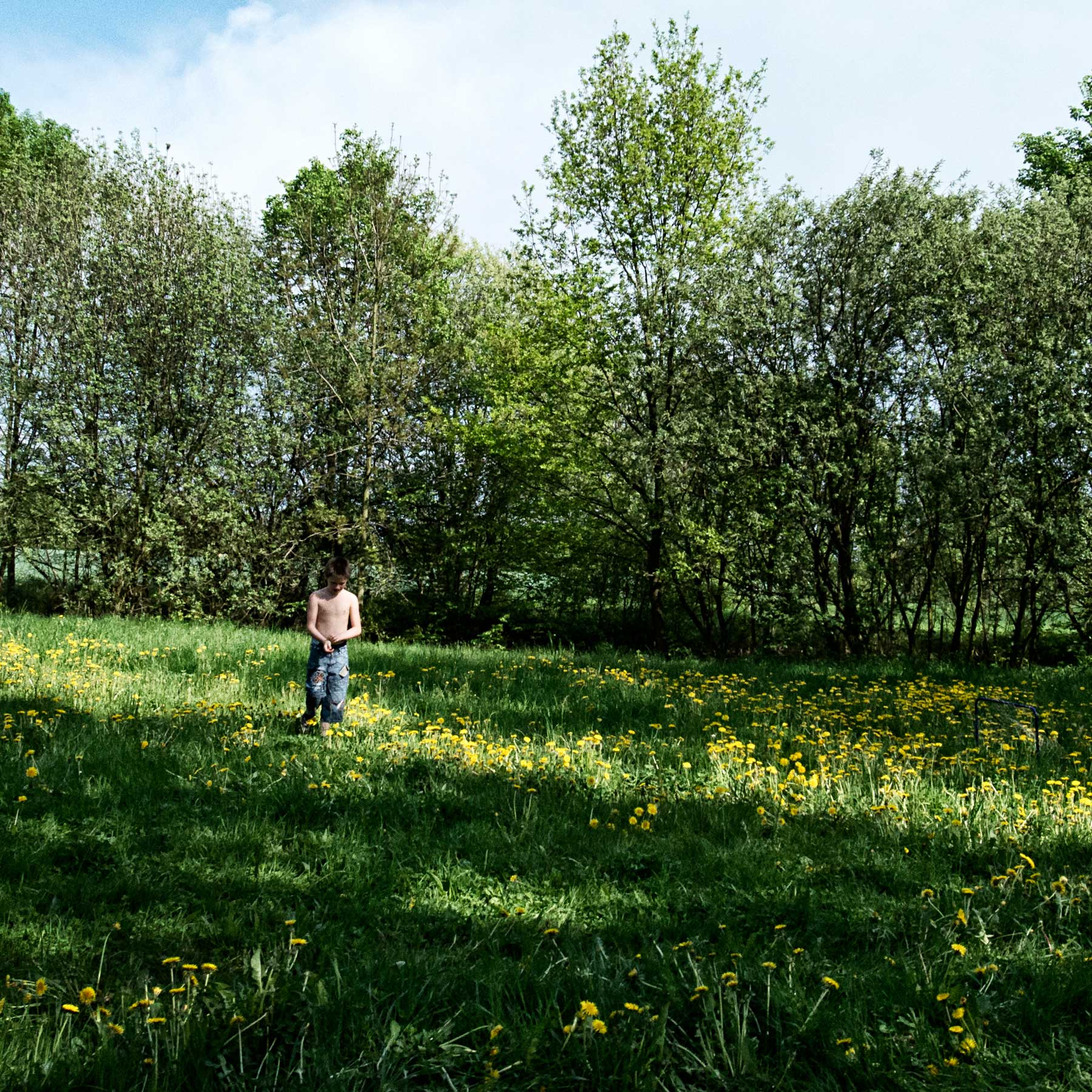 A young boy plays alone in an open field.