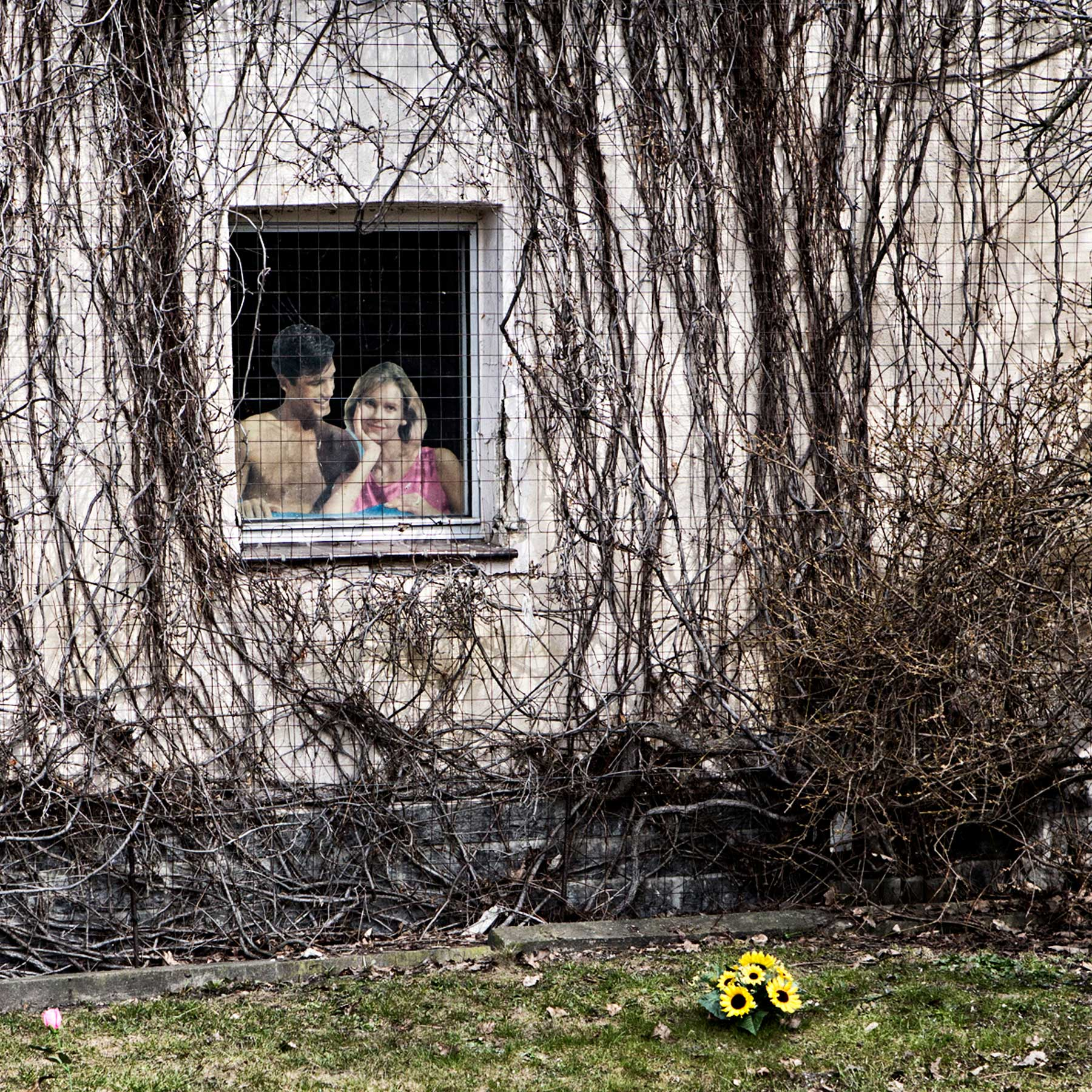 A cardboard cutout sits in the window of a home in a village on the outskirts of Hoyerswerda. The village is scheduled to be demolished so that the mining company, Vattenfall, can begin mining coal where the village stands.  The coal company has built a duplicate town 6 miles from the original town and use the cutouts to attract potential residence.