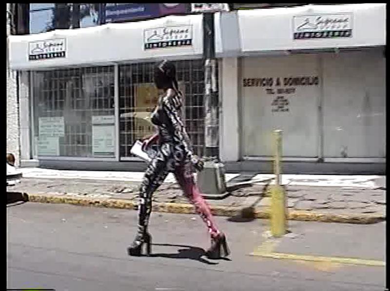 Villanueva_Pasionaria_video_02 2.png