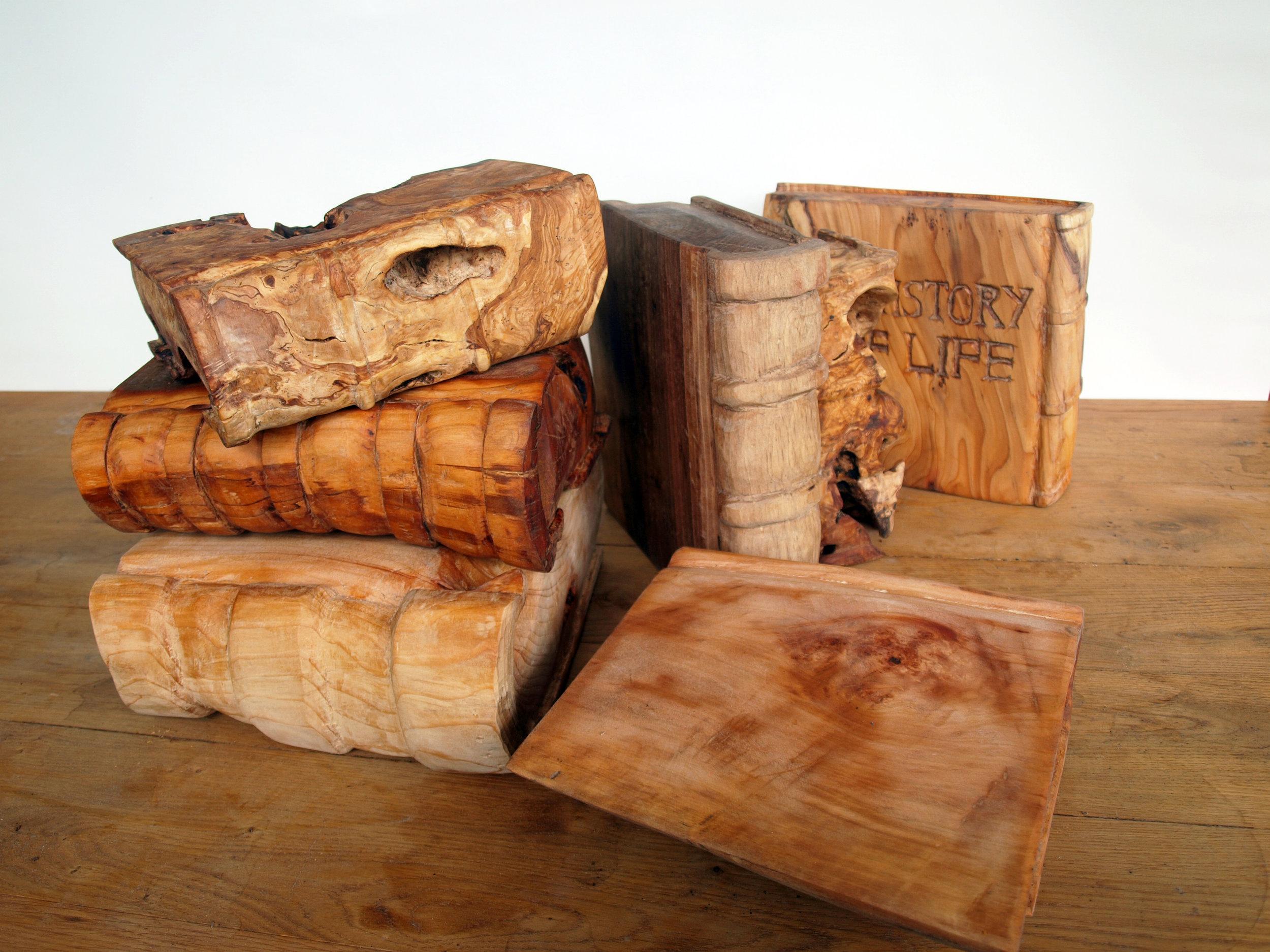 A history of life 2012 wood (17).JPG