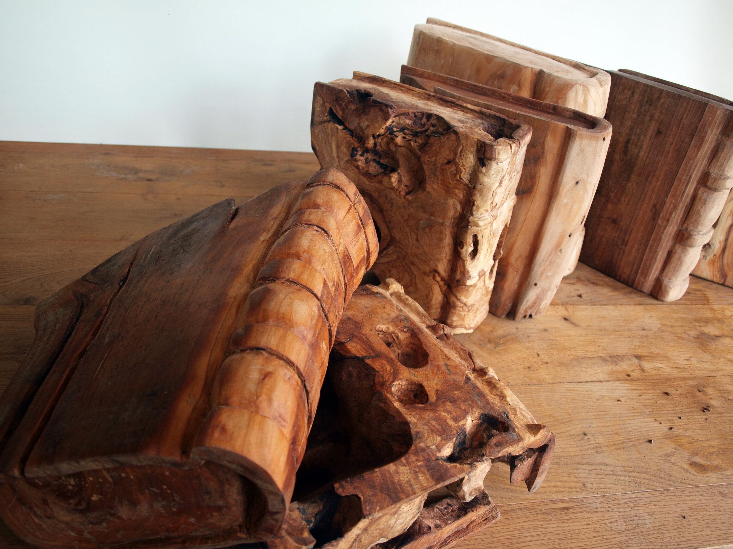 A history of life 2012 wood (20).JPG
