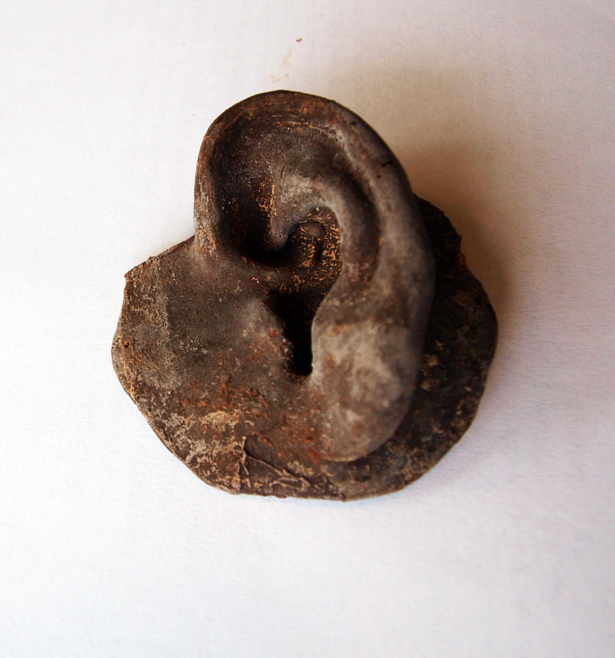 title, Artist's ears, size 9cm, 2011, materials, chocolate (1).JPG