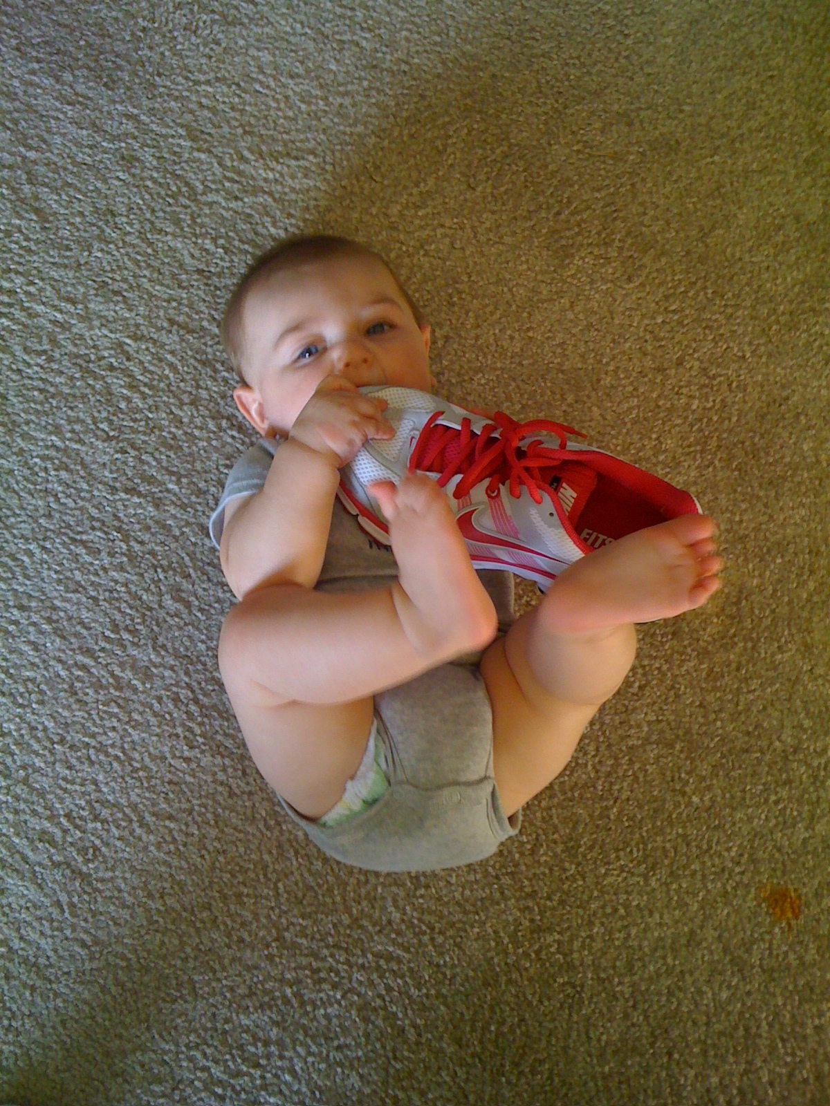 Baby Cameron playing with my shoe. Don't worry it was brand new.