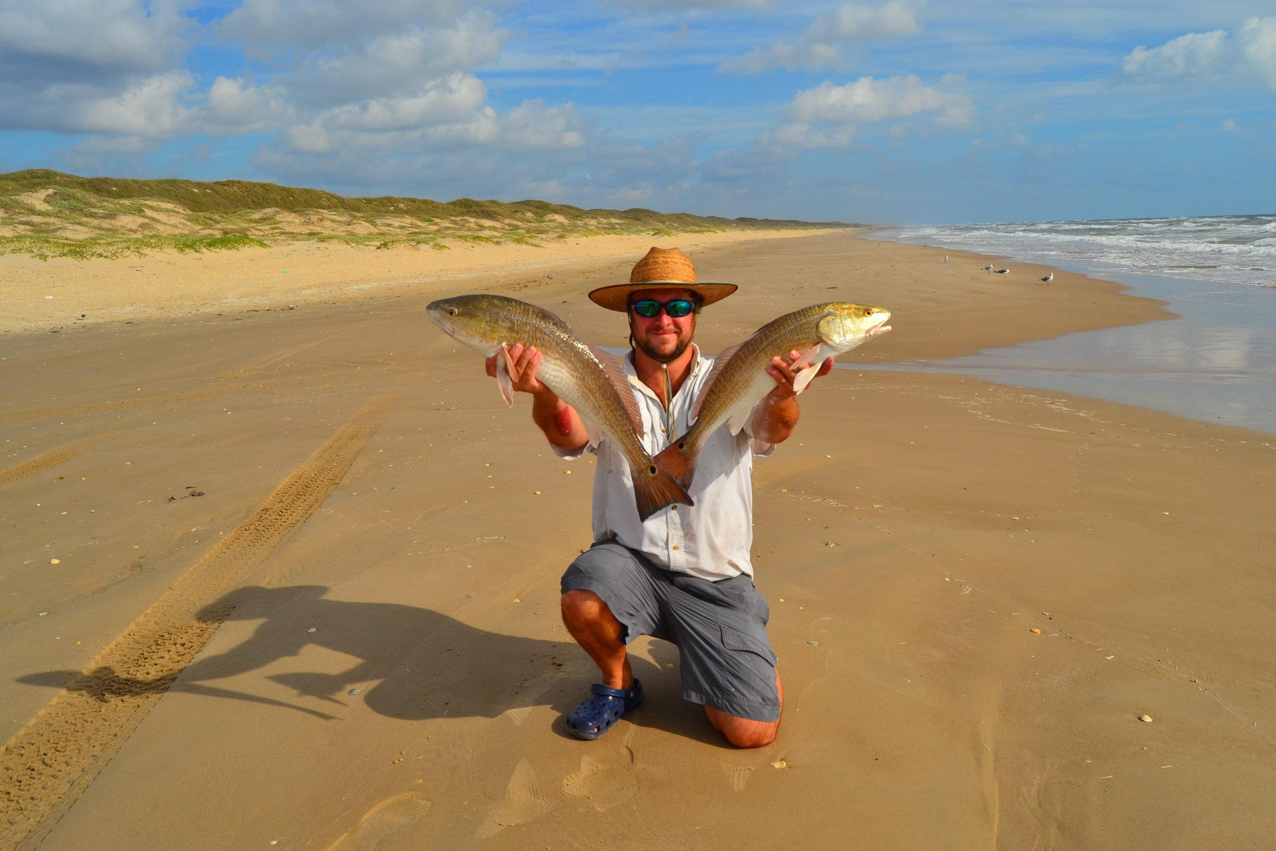Late summer redfish