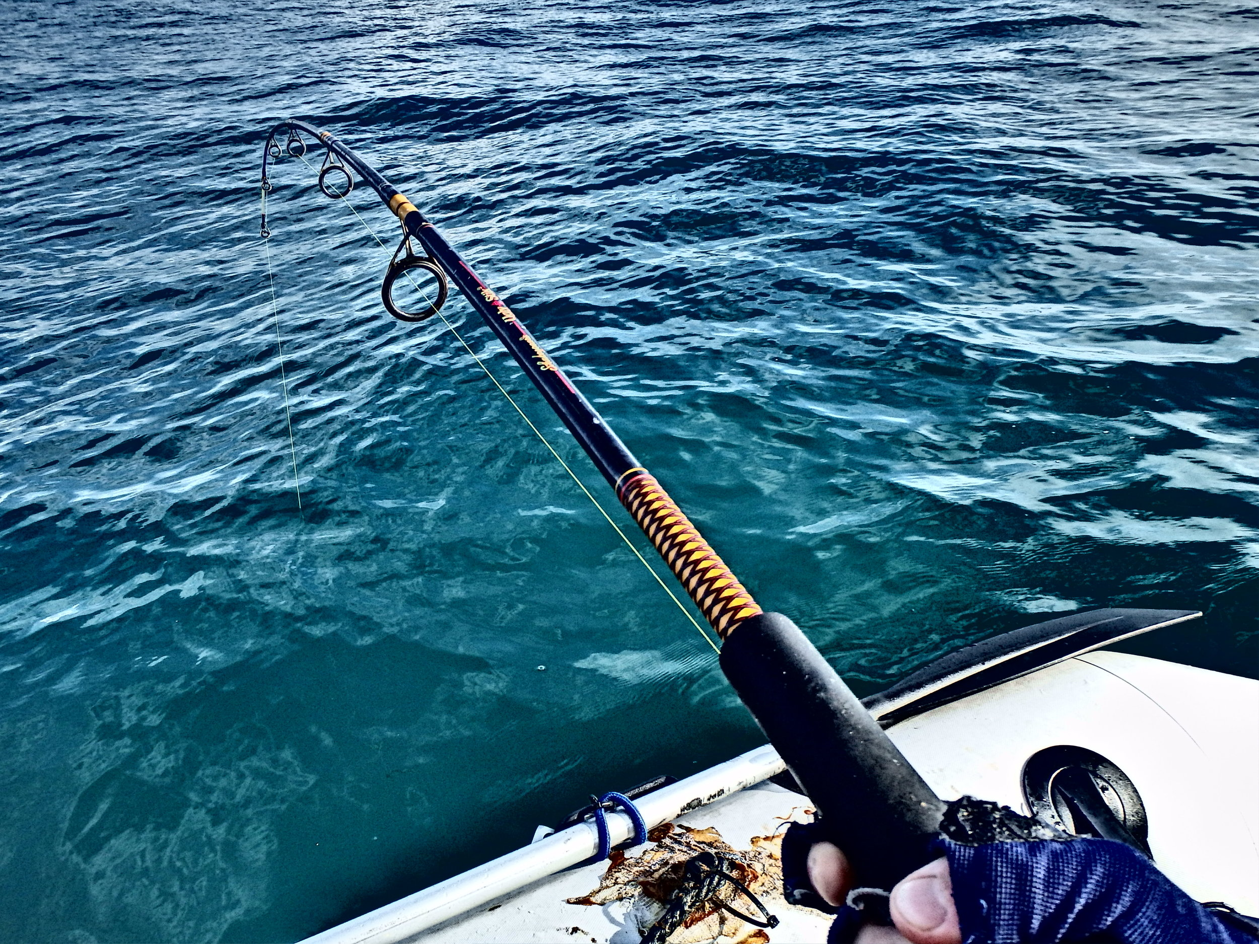 Hooked up!!  Reef fishing.