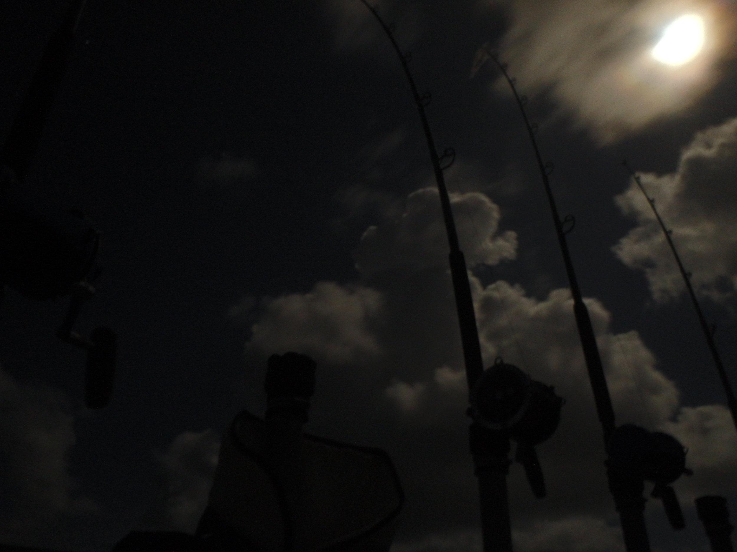 Full moon night in July shark fishing