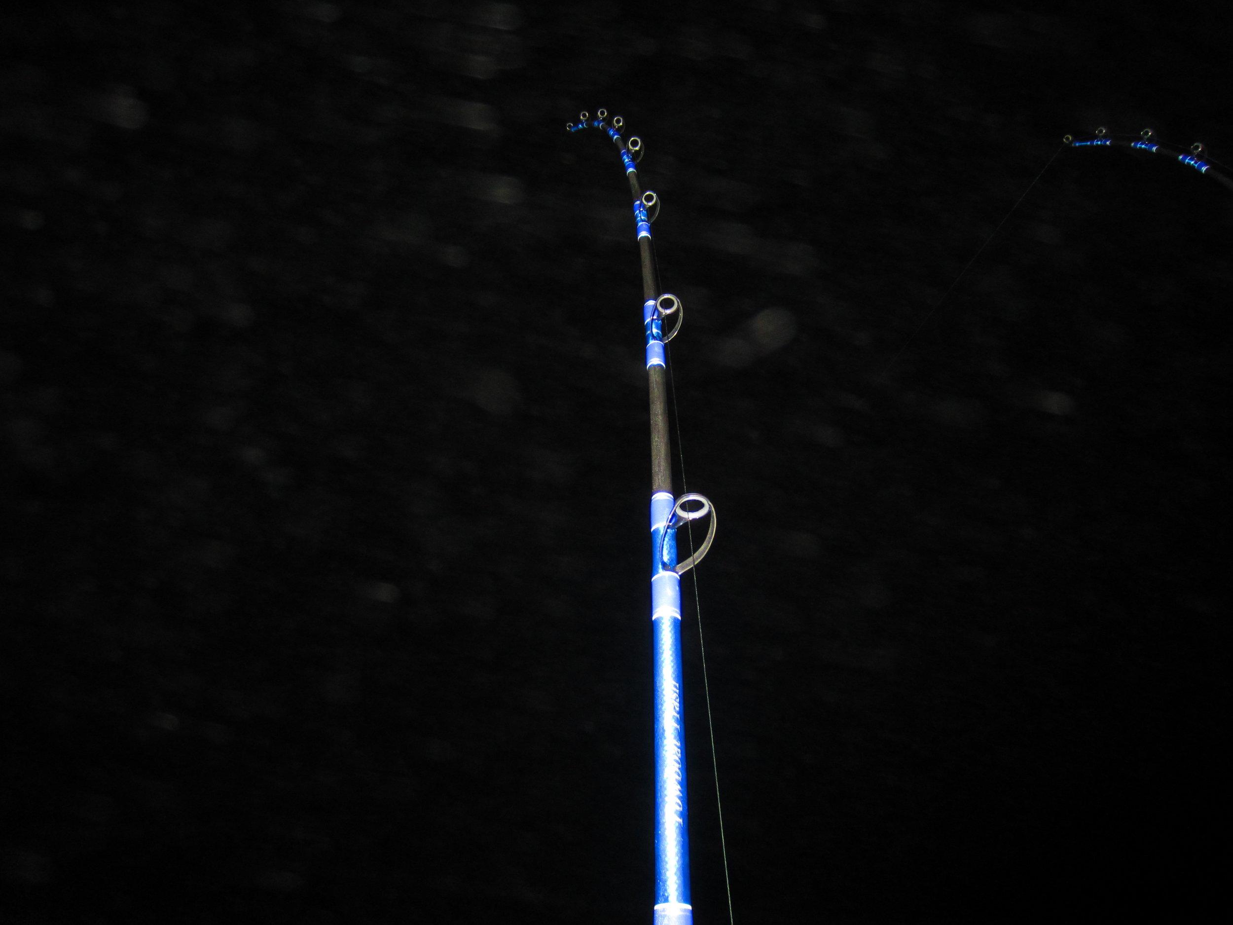 Calstar XXXH hooked up to a shark
