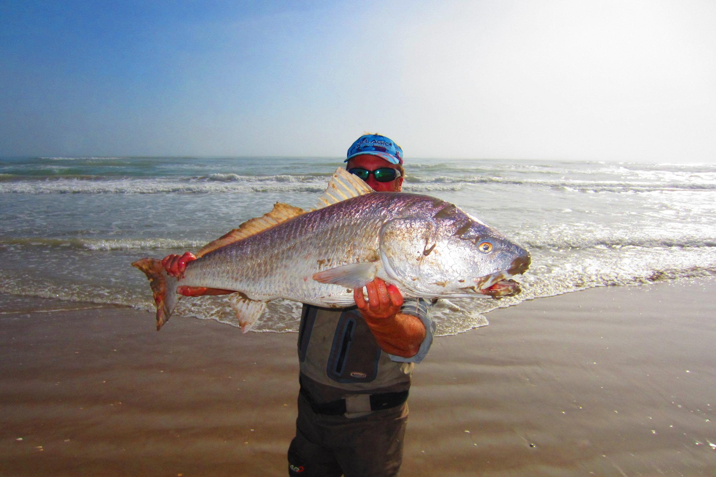 Bull Redfish