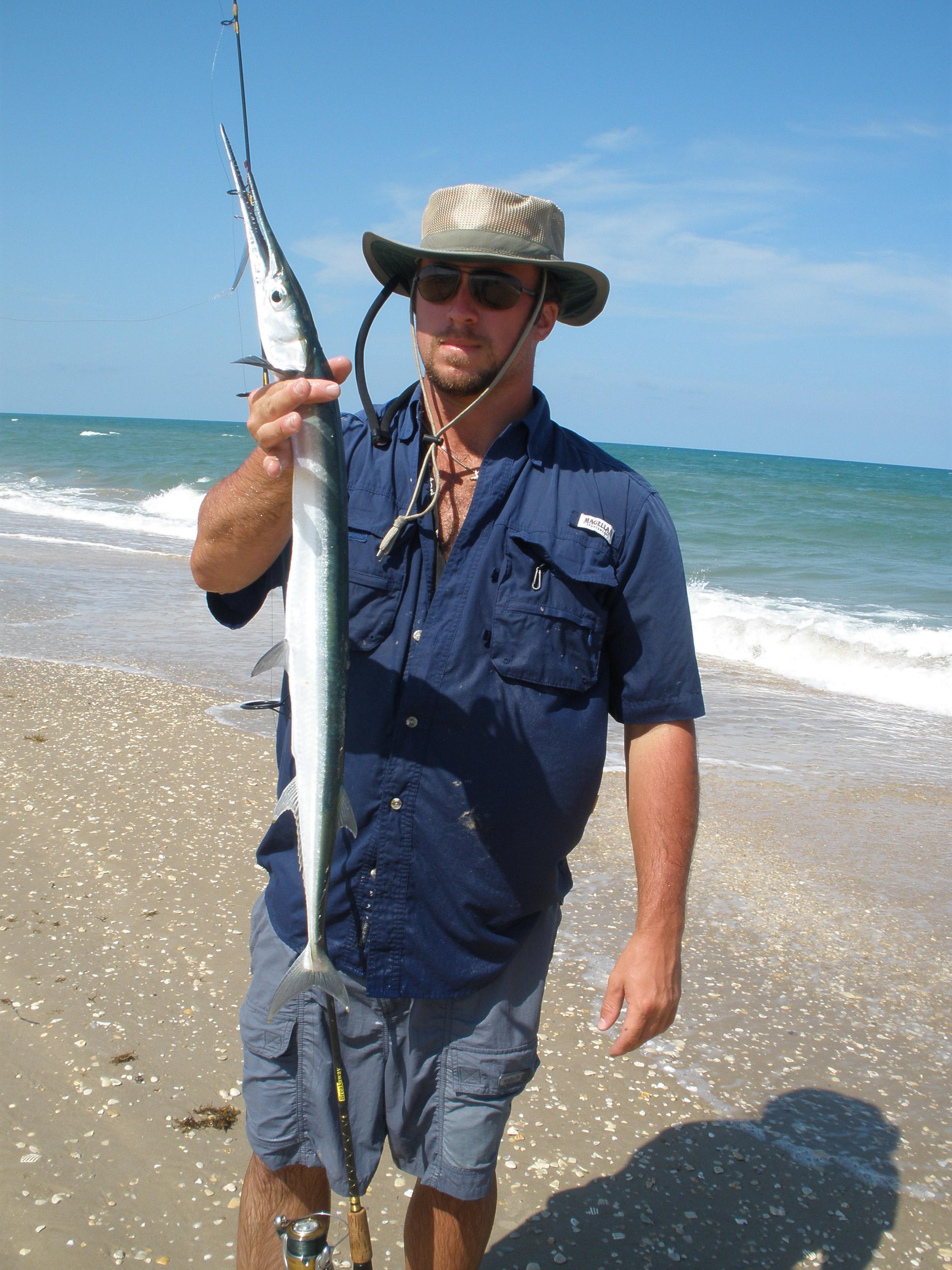 August Houndfish