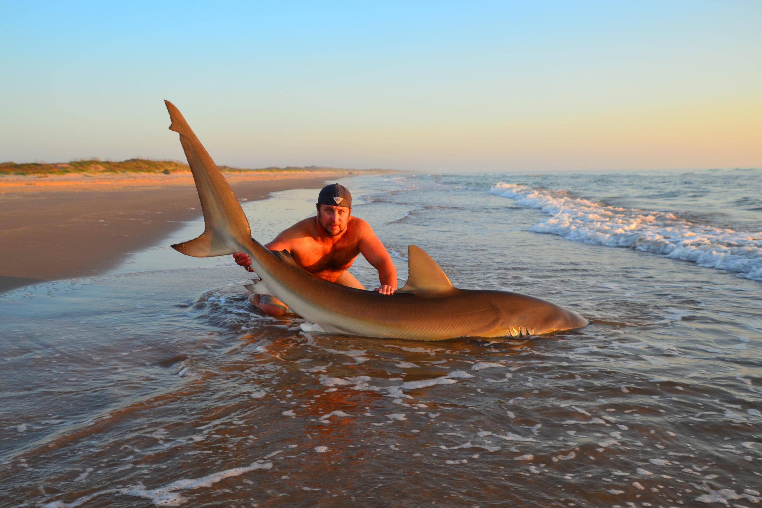 9' 2'' Female Dusky Shark