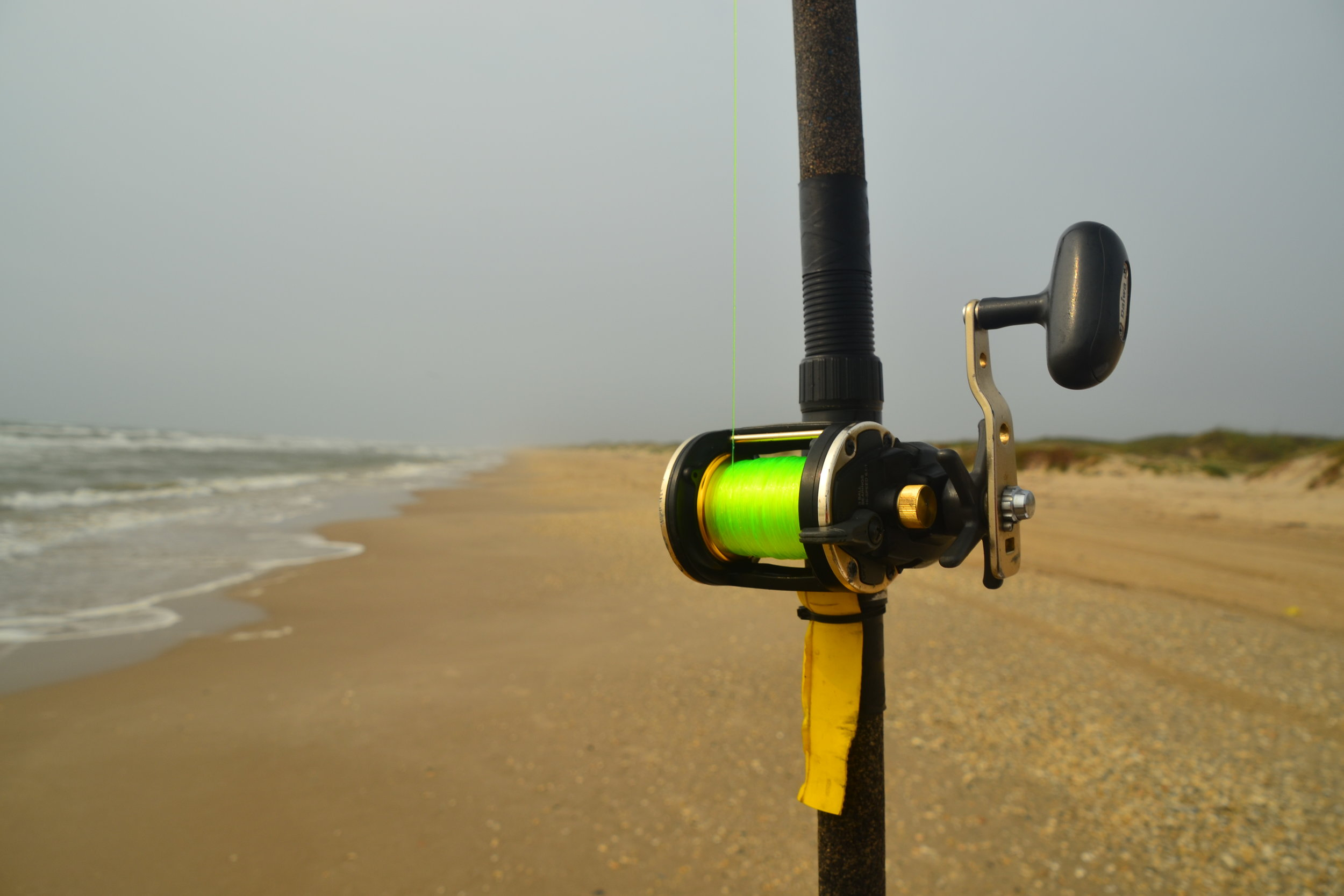 4-6 ft sea makes bait fishing enjoyable, even in high winds.