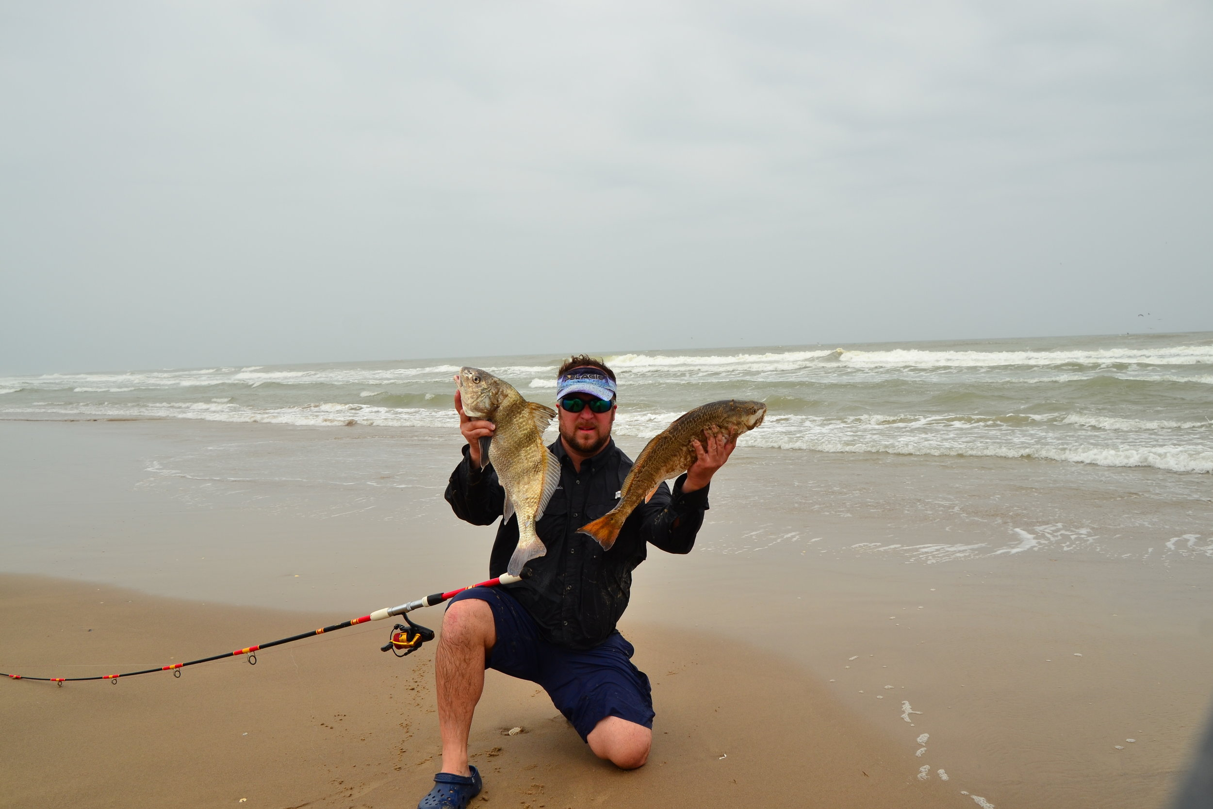 Another surf redfish on lure and a eating size black drum.