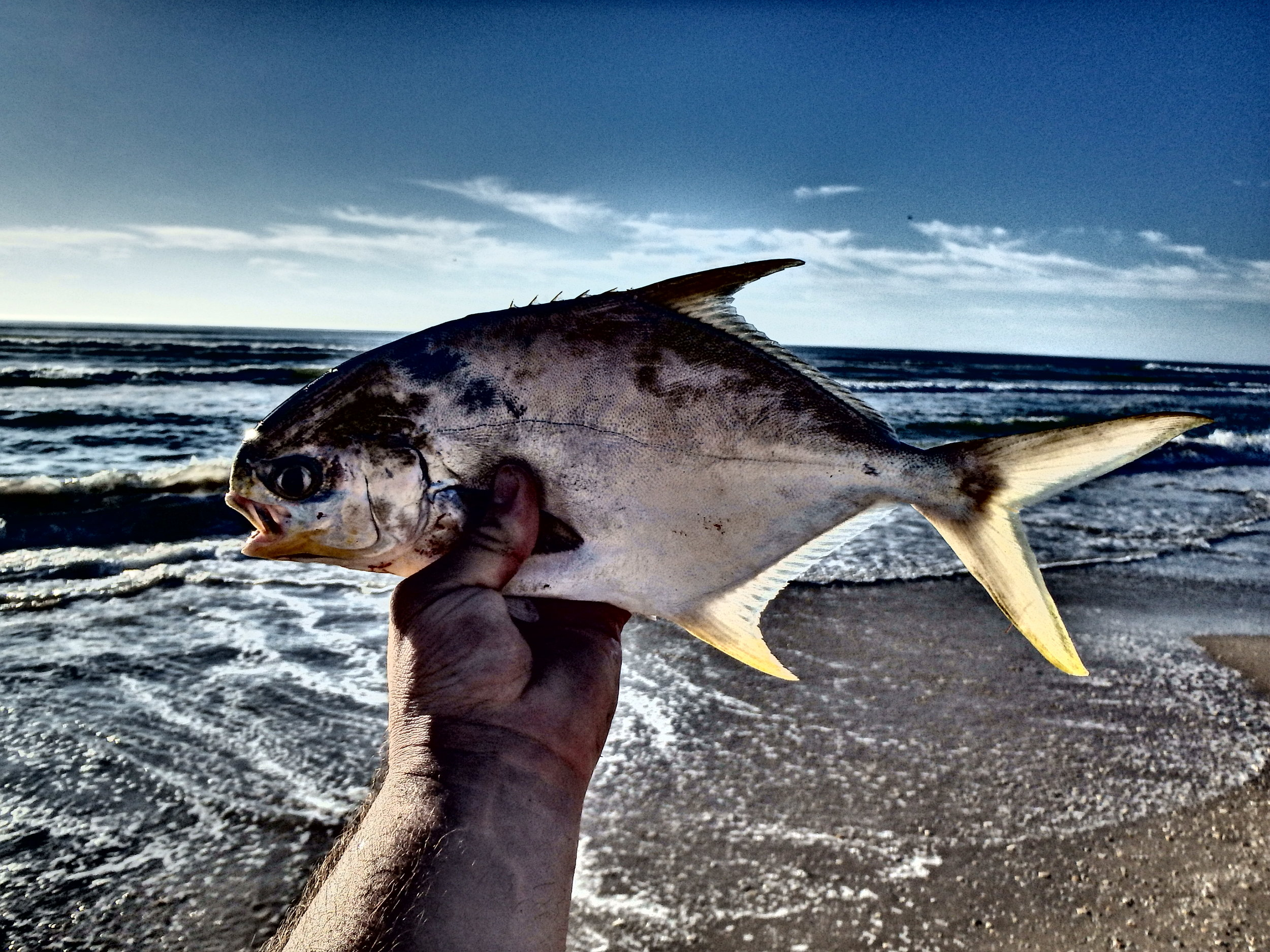 And that was a wrap, ended up visiting with a new friend on a lure expedition down the beach a little ways.