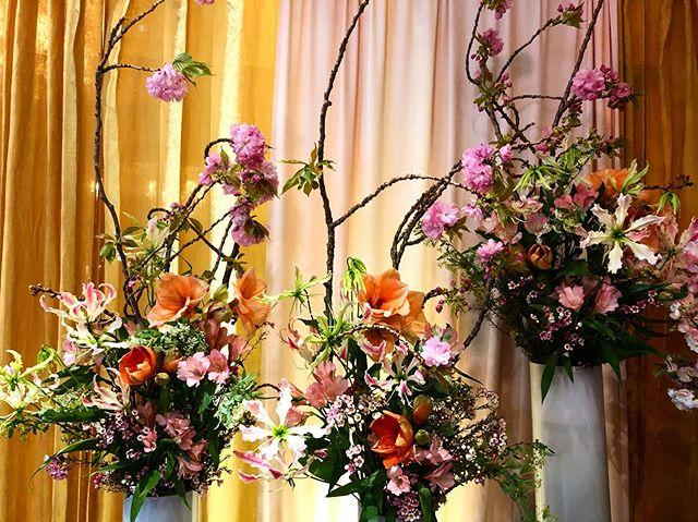 🌸🌸🌸🌸🌸 . . . #cherryblossom #aranjira #flowershop #delivery #weeklyflowers