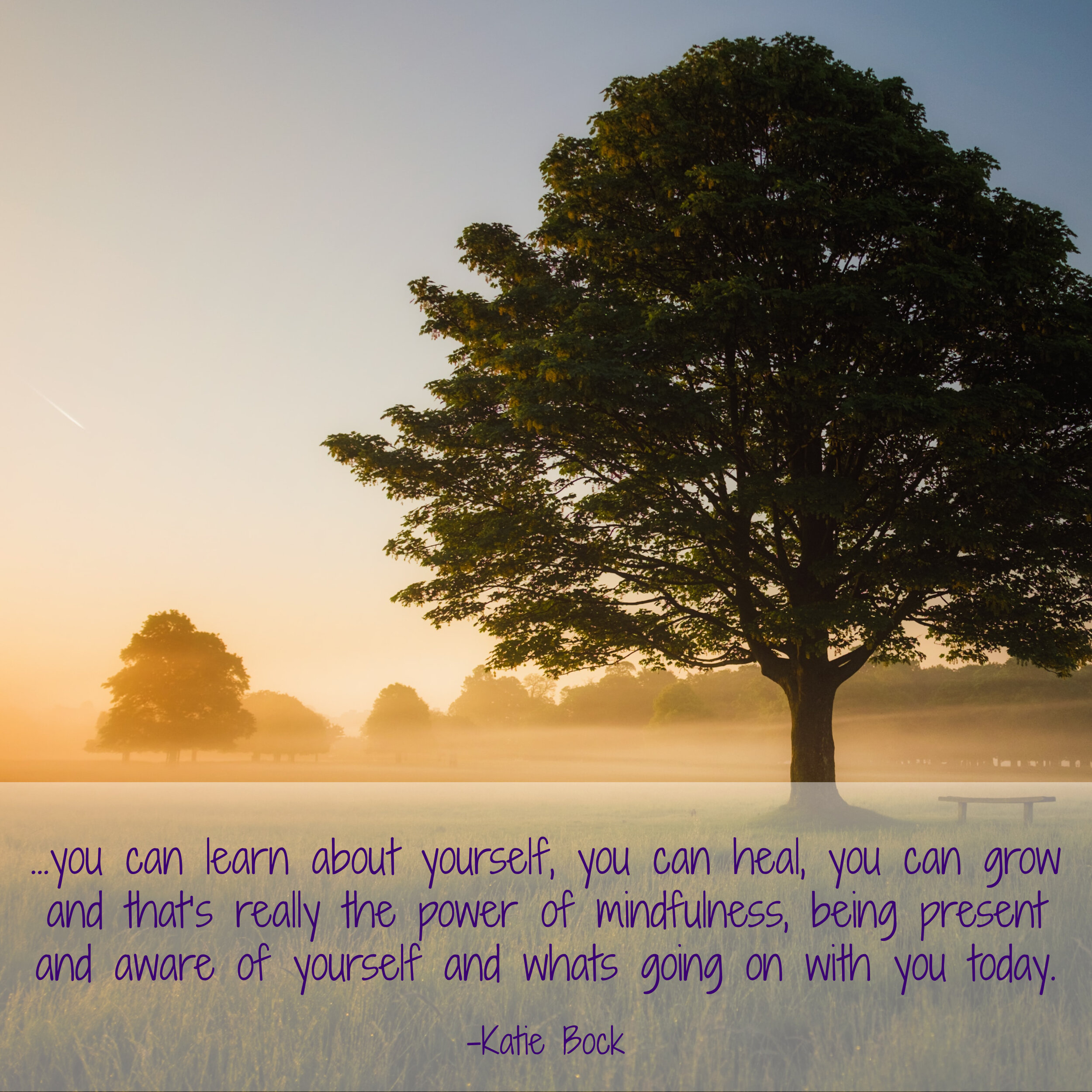 Simplify Mindfulness Shareable Quote.jpg