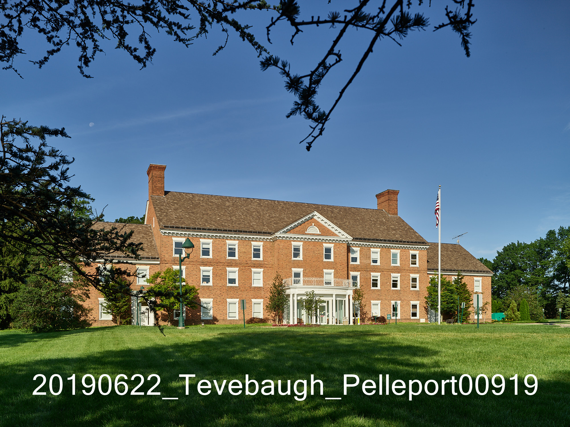 20190622_Tevebaugh_Pelleport00919.jpg