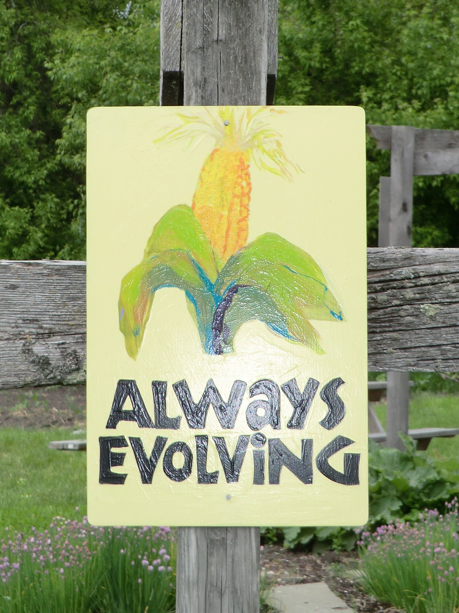 Blog — Intervale Community Farm