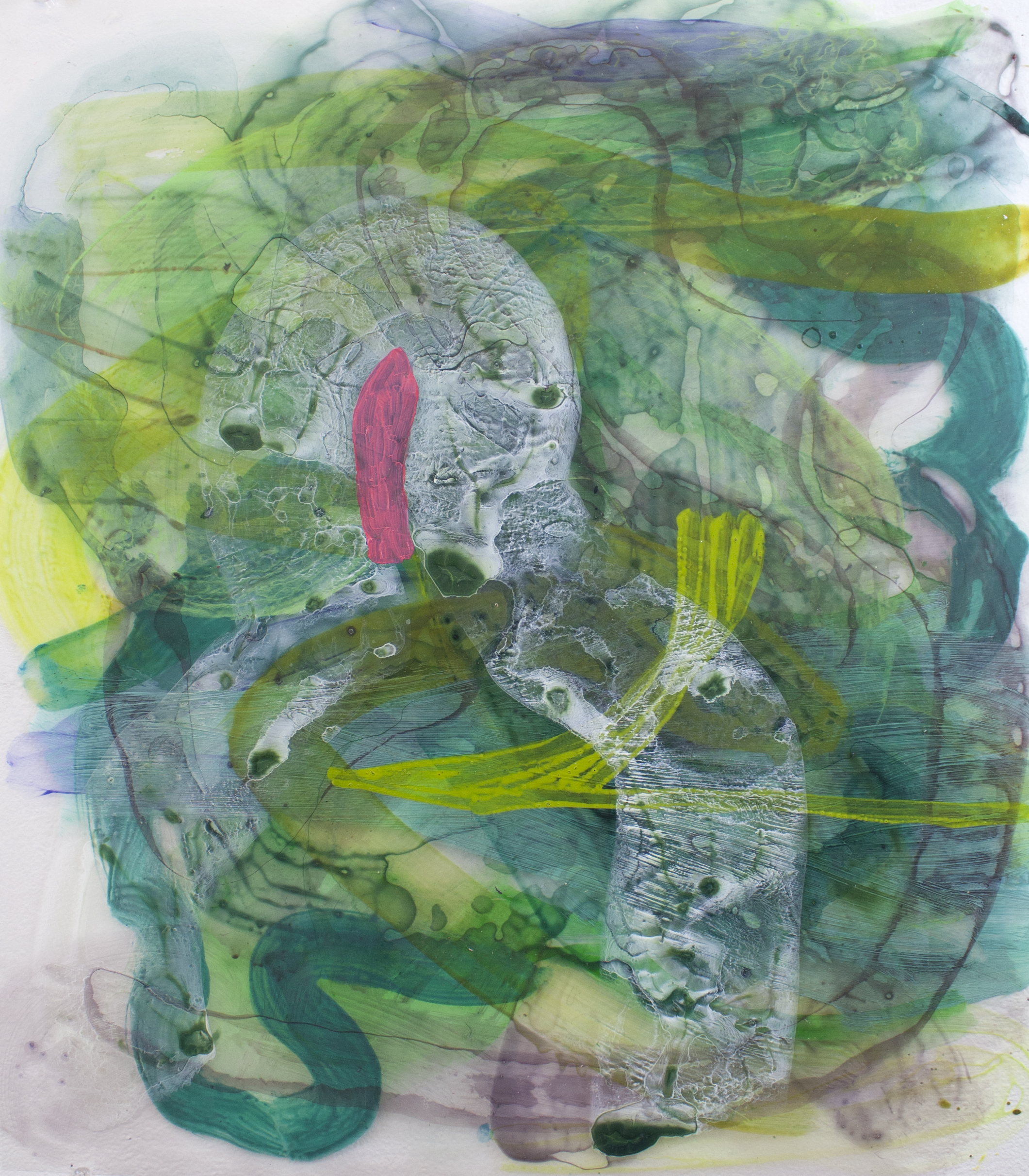 Grove Tight   2015  Acrylic on acetate  20x24 in