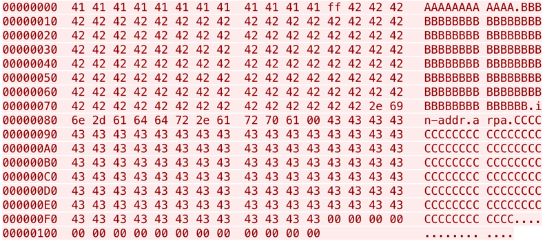 Figure 10: A malicious DNS request